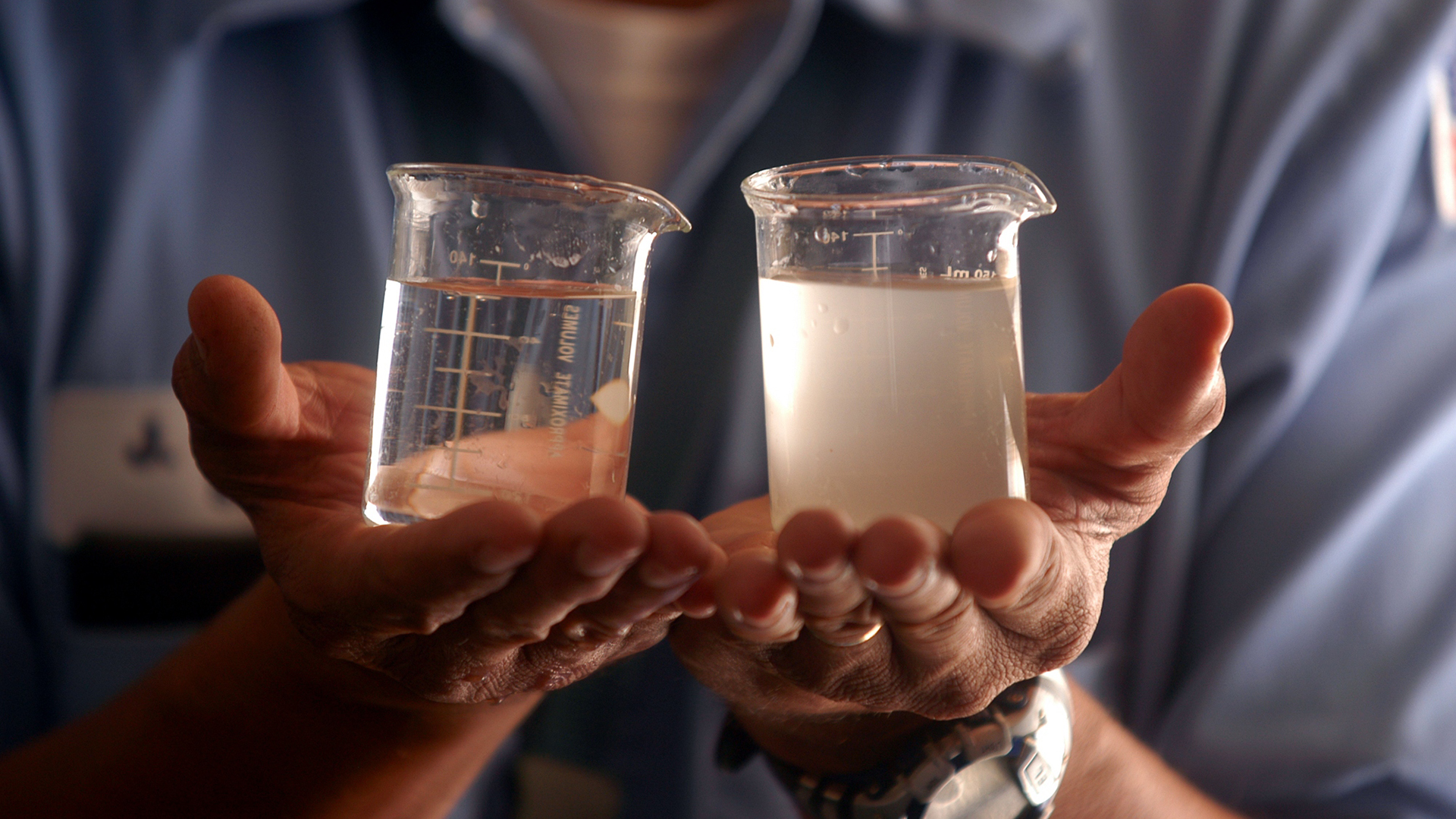 how to make seamonkey water