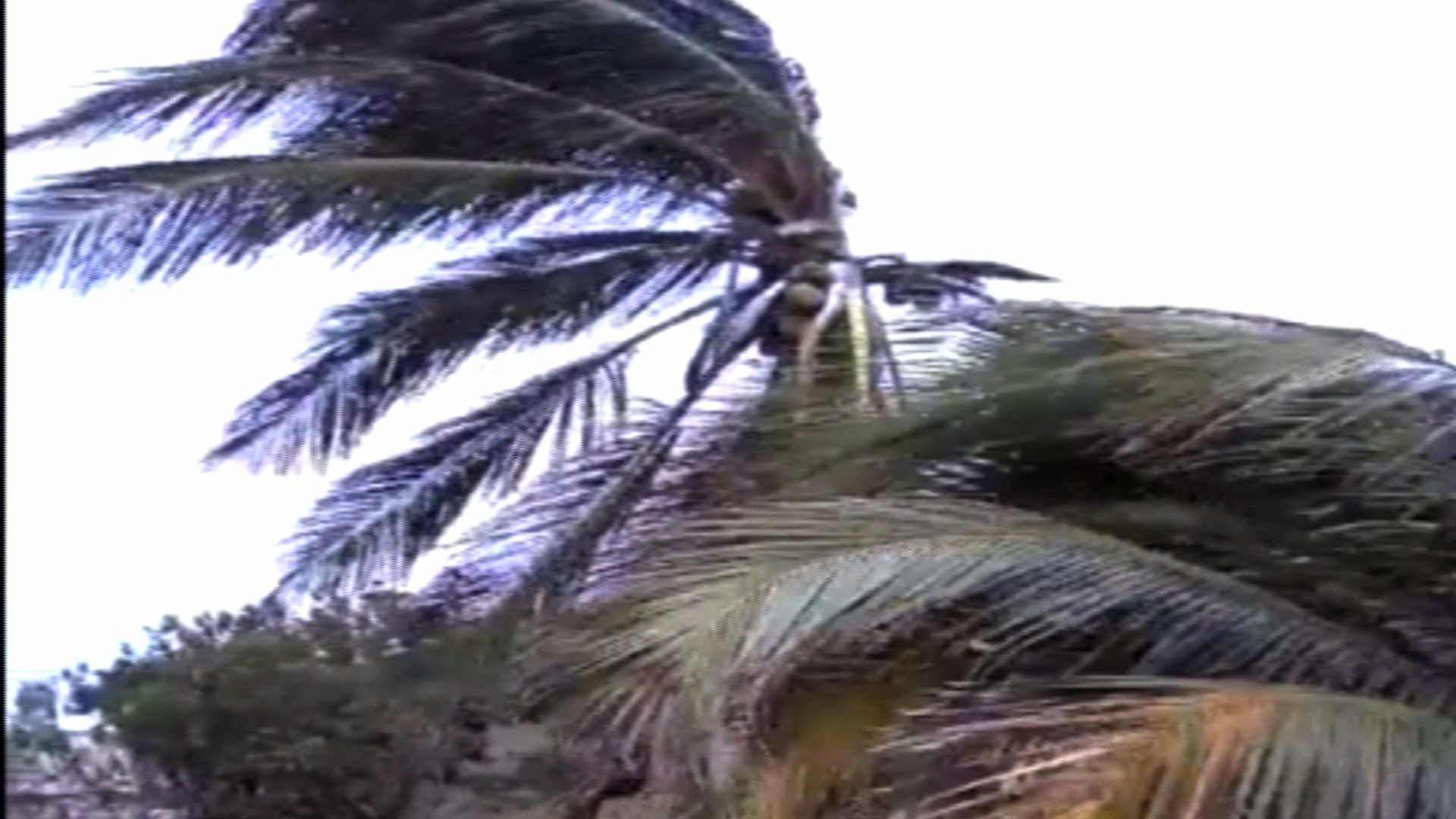 Historic Rains Likely for Carolinas, Virginia; Hurricane Joaquin Gains Power