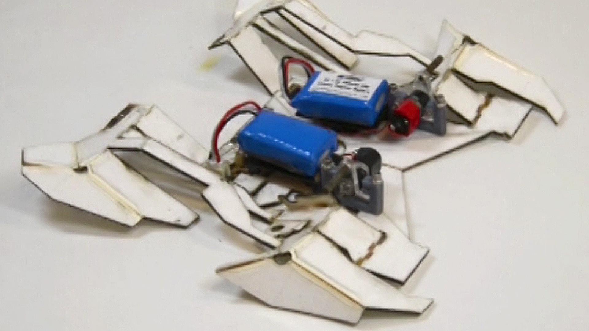 Botmakers unite origami robots could start transformer origami robots could start transformer revolution nbc news jeuxipadfo Images