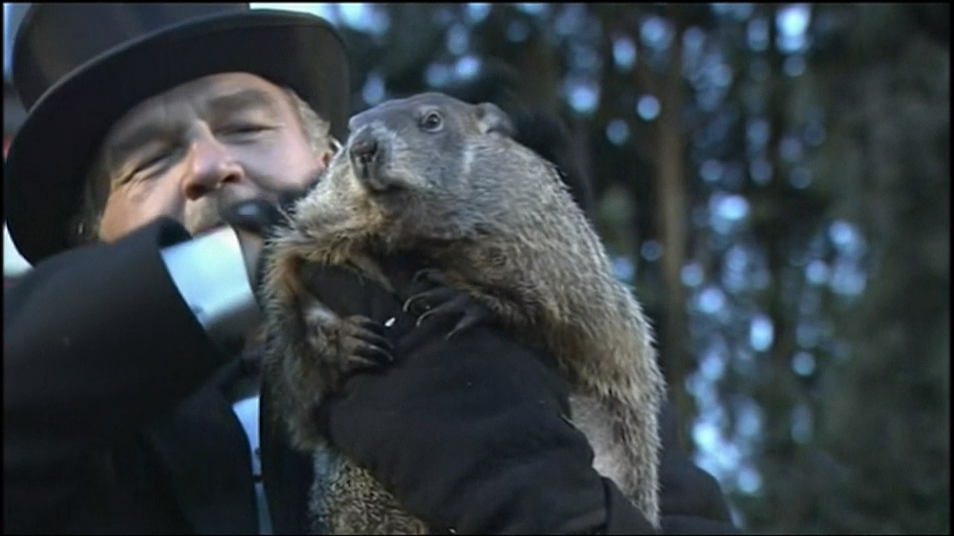 how to explain groundhog day
