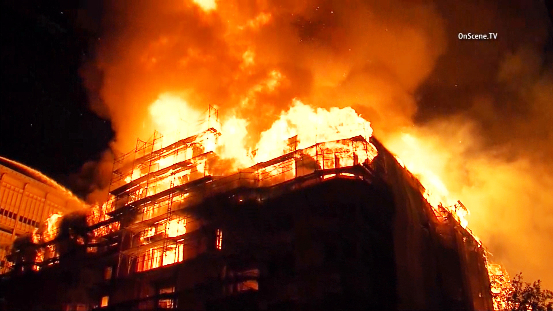 la fires - photo #10