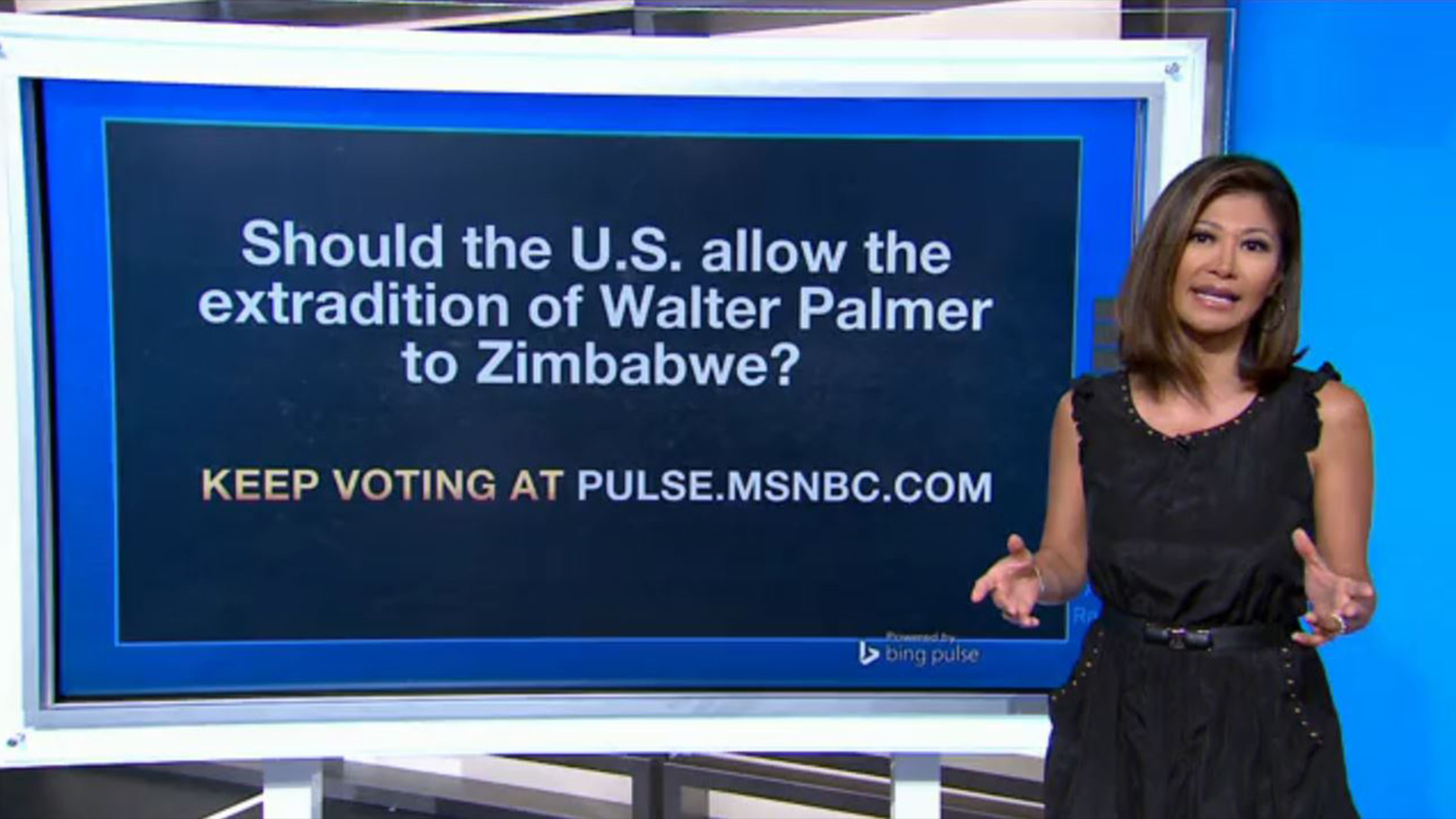 Show US allow a Walter Palmer extradition?