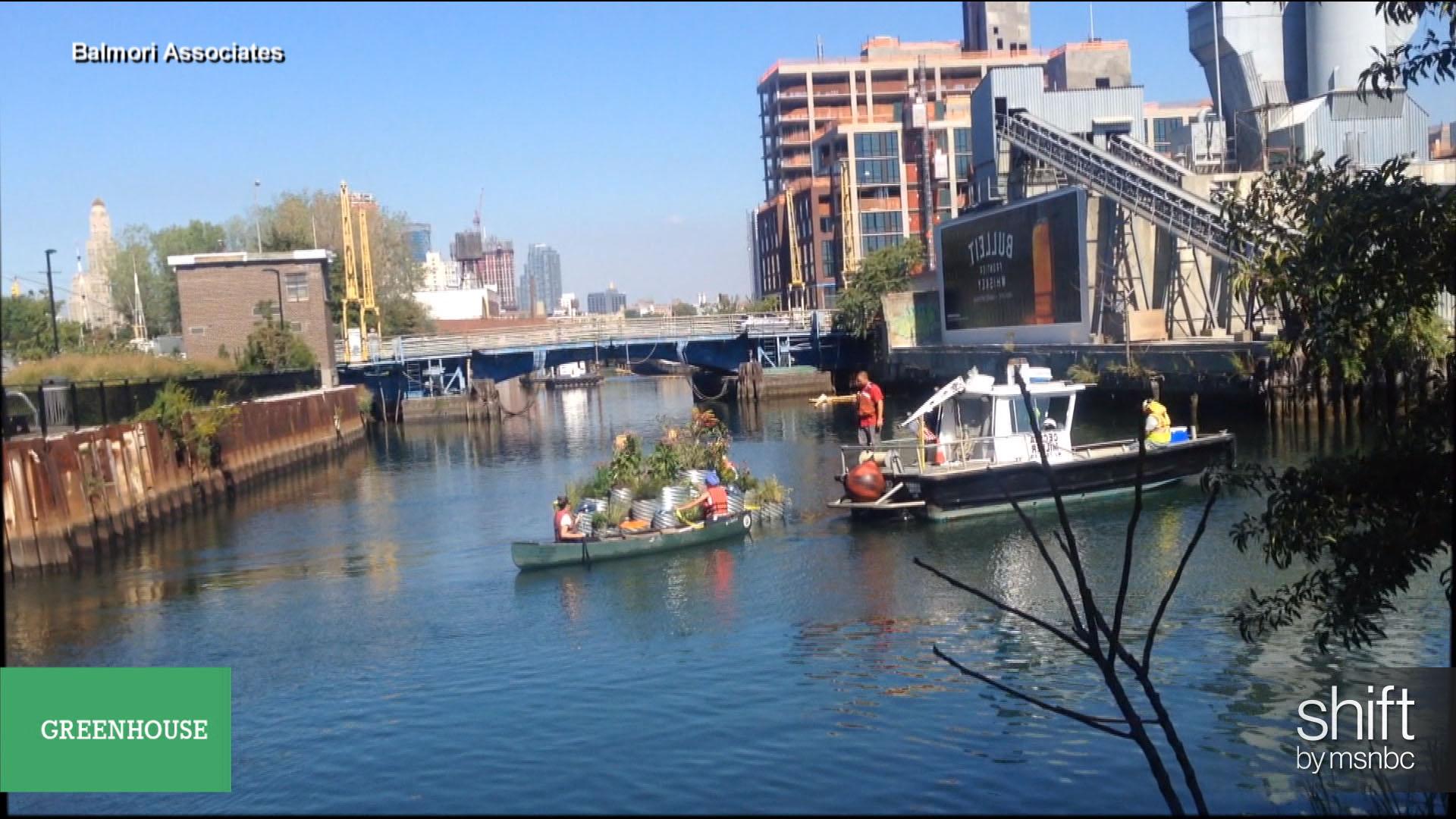 Floating garden will clean the Gowanus