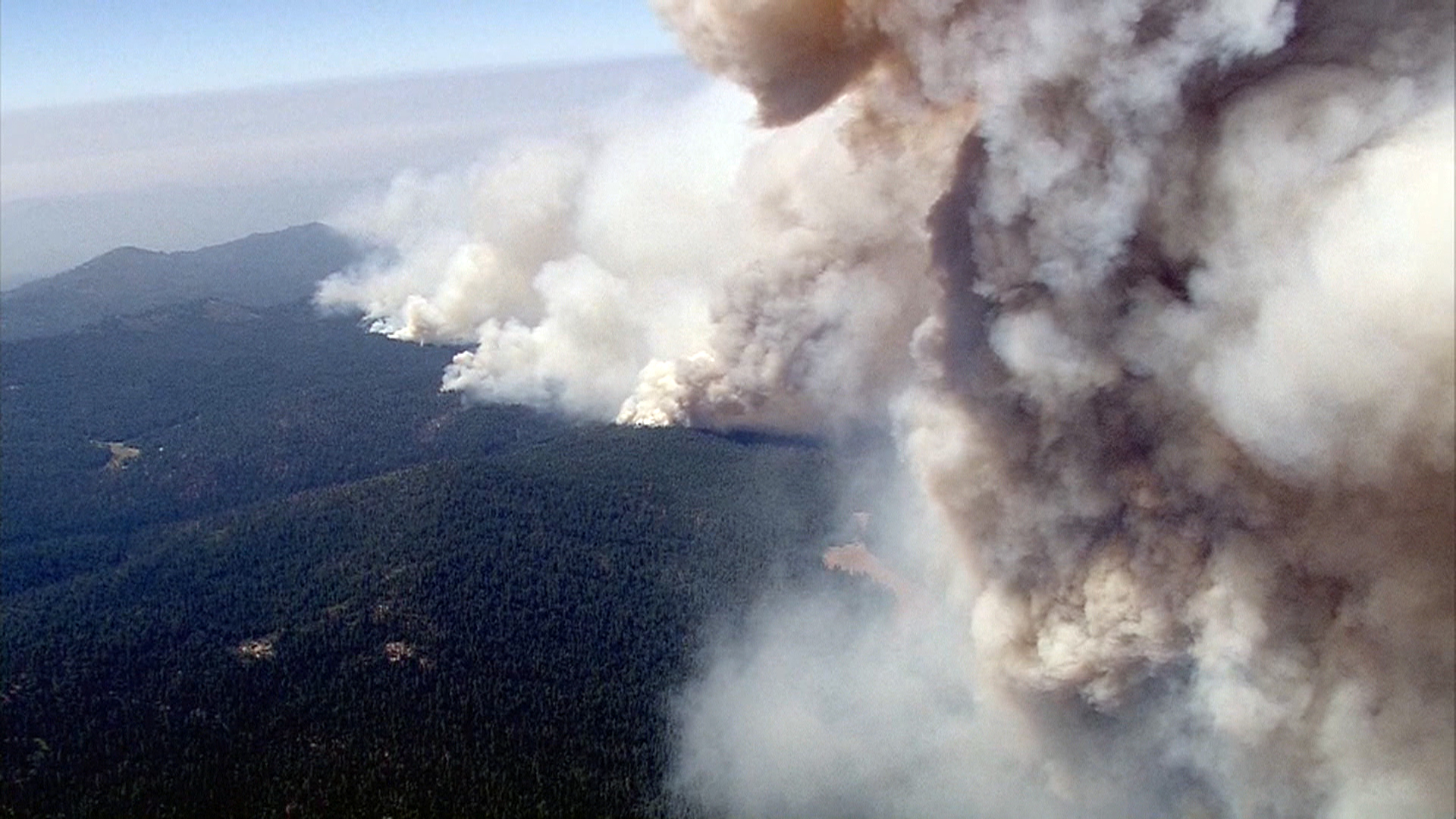Hundreds of california cattle feared hurt dead as massive rim fire hundreds of california cattle feared hurt dead as massive rim fire scorches region fandeluxe Choice Image