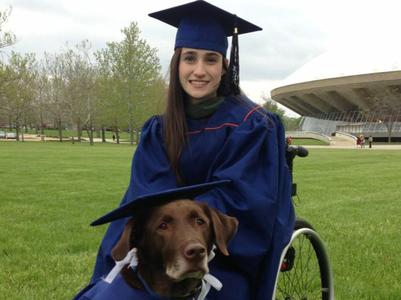 Pup in cap and gown graduates with owner - Video on NBCNews.com