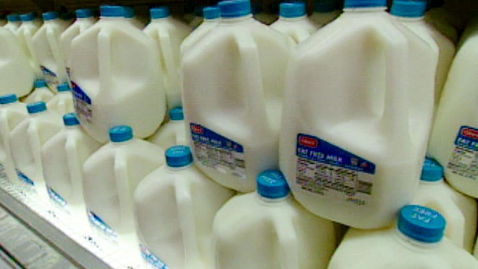 Could a2 Milk Solve Lactose Intolerance Symptoms For Some?