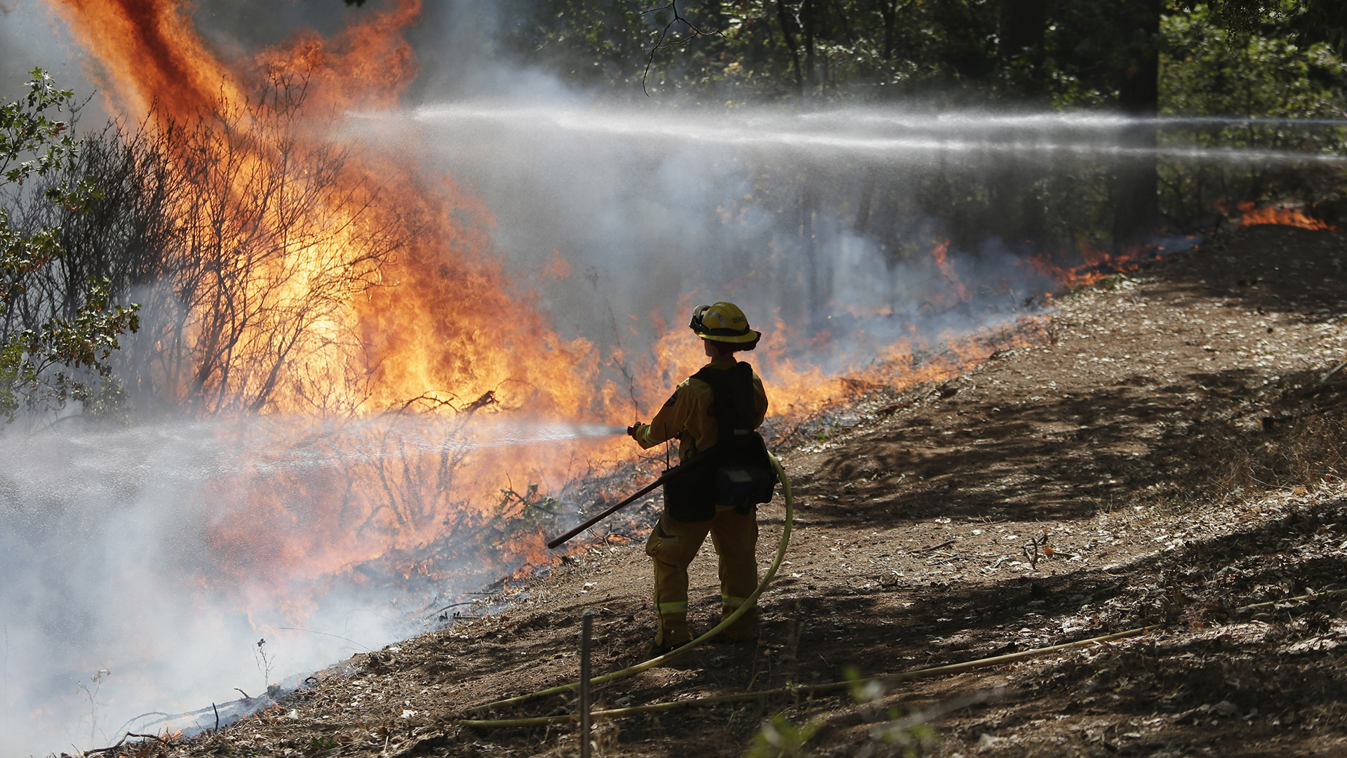 King Fire Now Second Priciest in State This Year