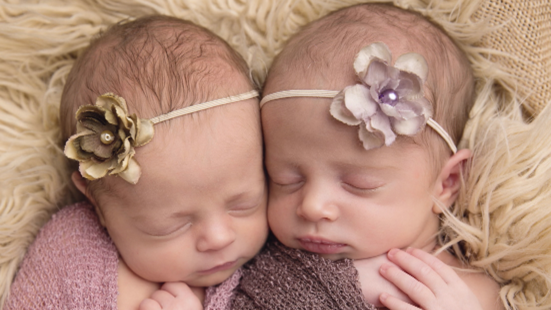 two cute! photographer takes adorable pics of newborn twins