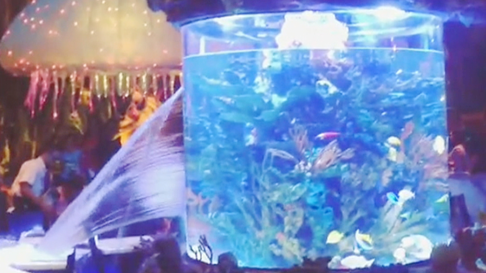 Disney restaurant s fish tank springs a leak for Disney fish tank
