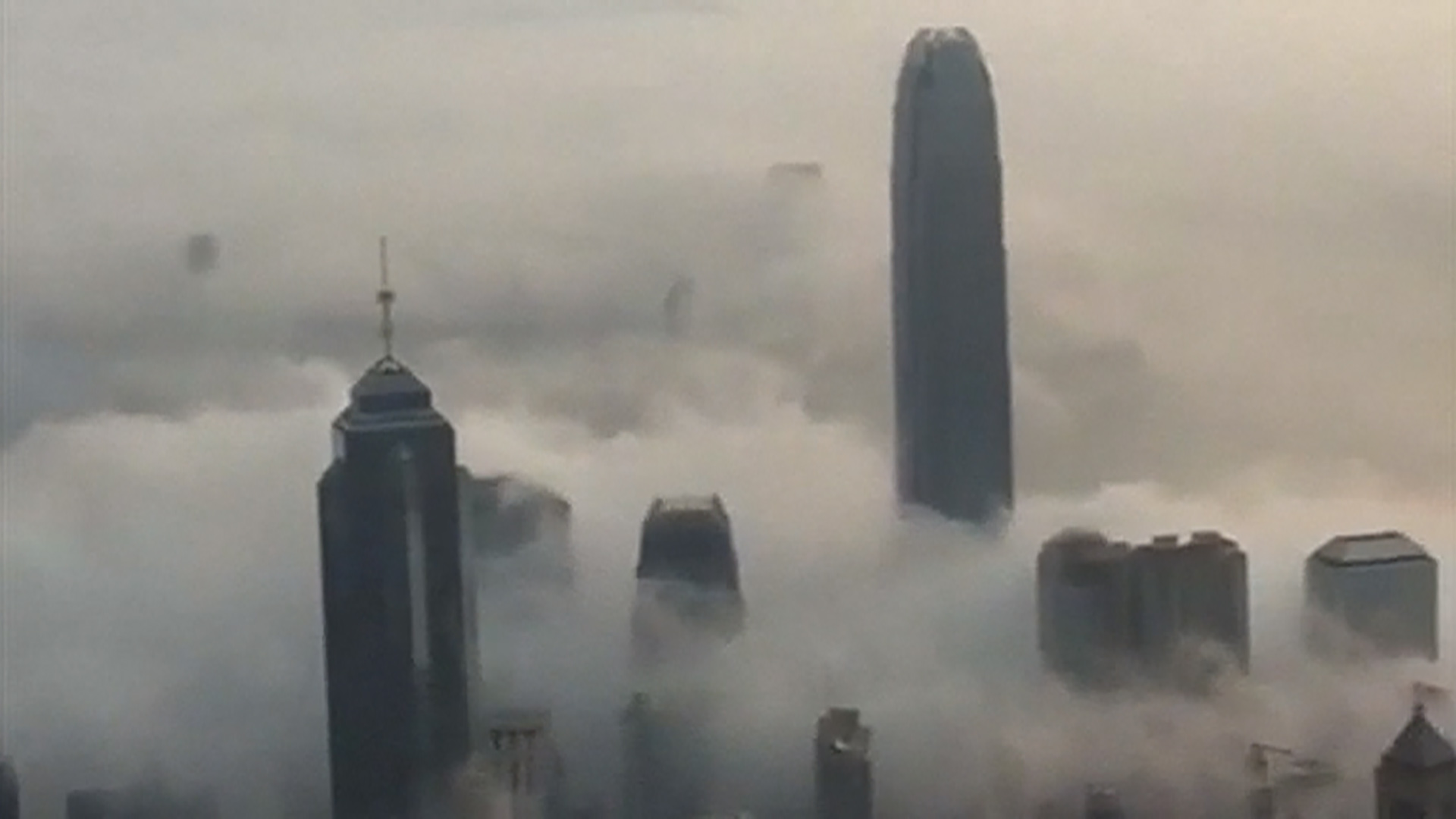 Best Quality Gas >> Dense Fog Shrouds Hong Kong's Skyline