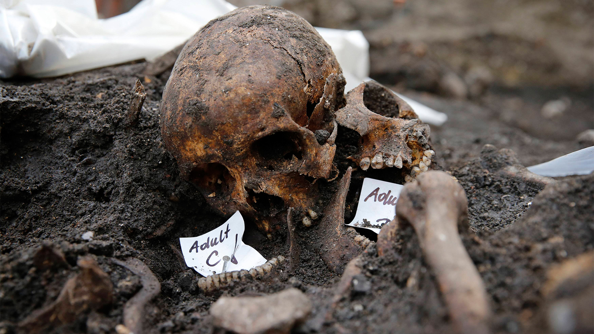 Archaeologists Study 3,000 Skeletons at London's Bedlam