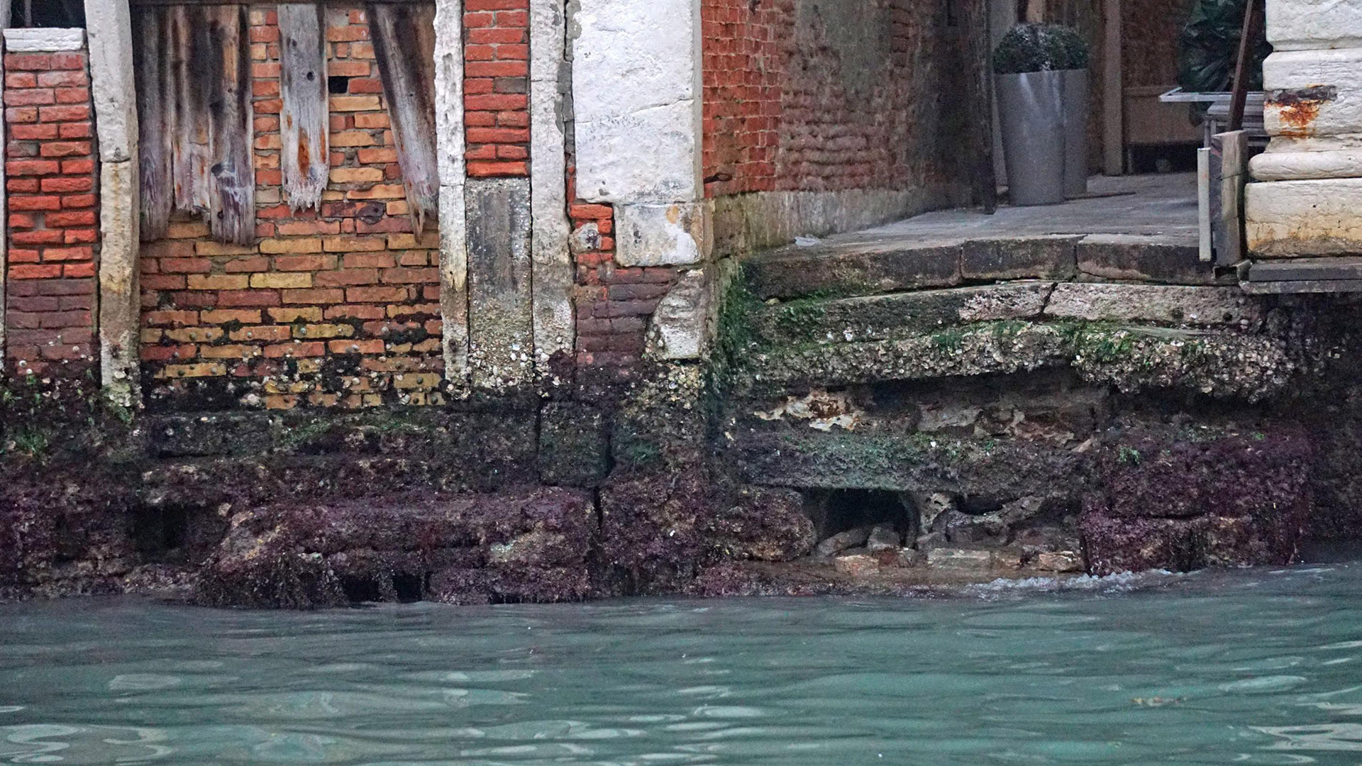 Freak Low Water Levels In Venice Italy Cause Problems Nbc News