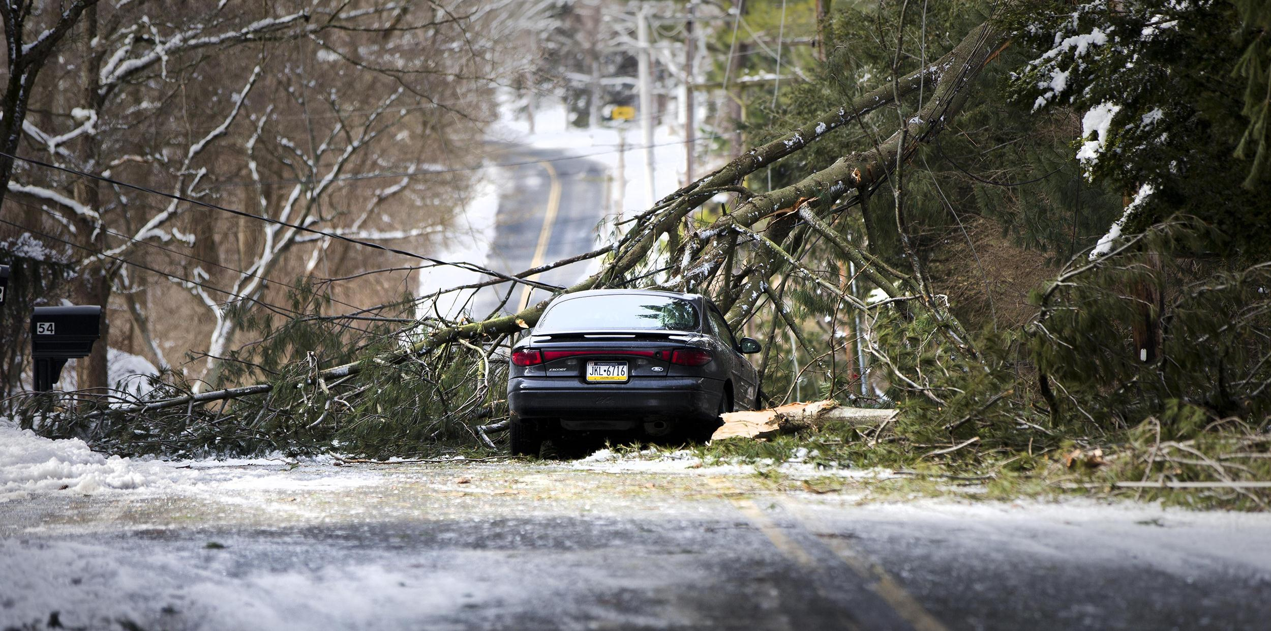 Image: An abandoned car and a tree limb that took out a utility line block a road in the aftermath of a winter storm
