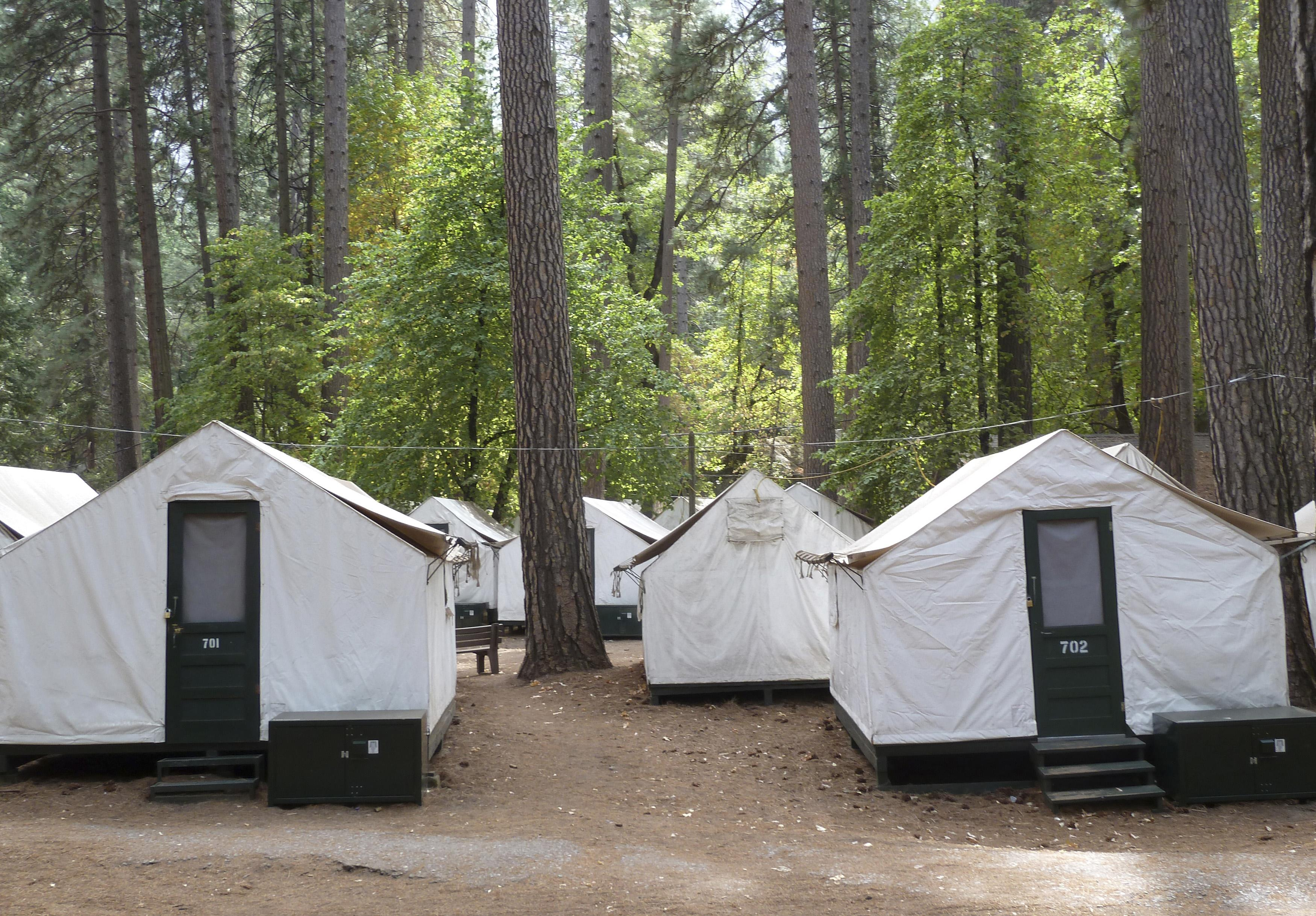 & Cozy Insulation Blamed For Deadly Yosemite Outbreak