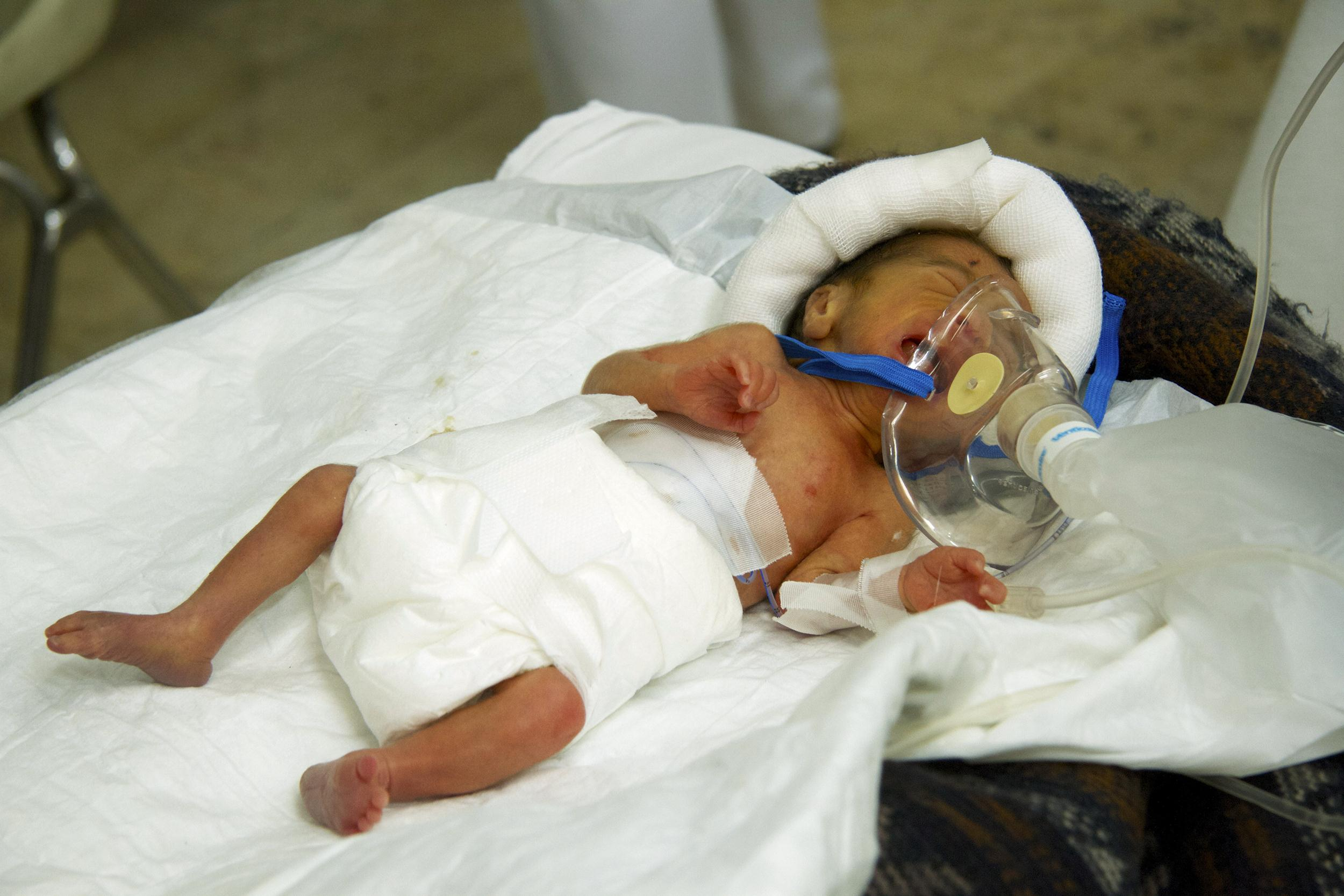 Image: Ali Shaaban is one day old.