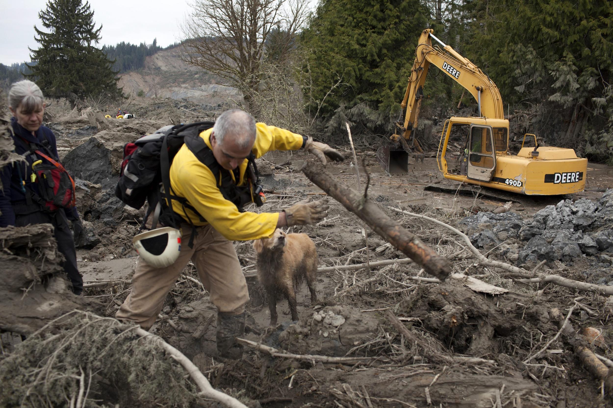 Image: Mudslide aftermath in Oso, Washington