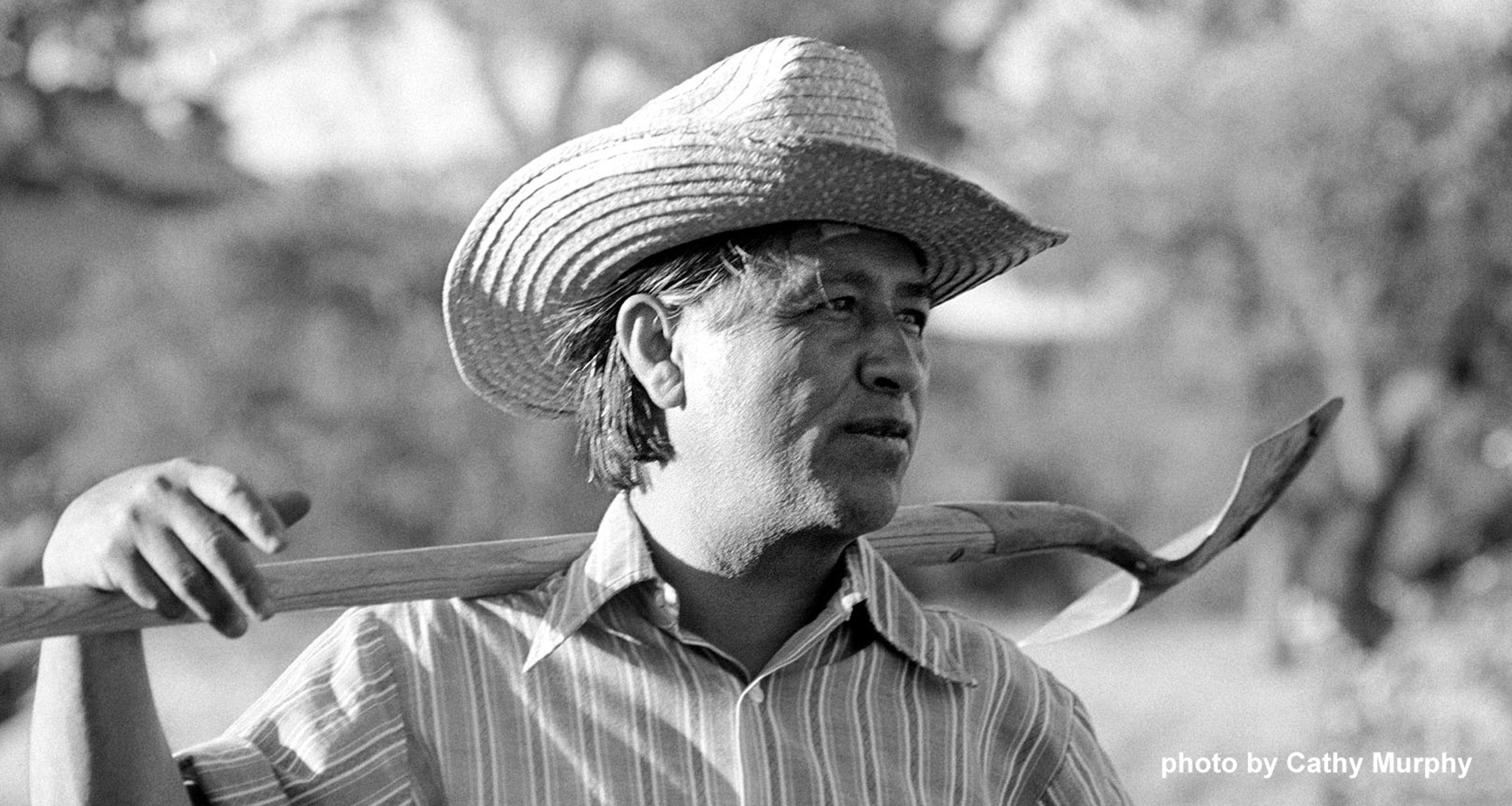 "Cesar Chavez: ""C Is For Change"" Author Wants Next Generation To Know"