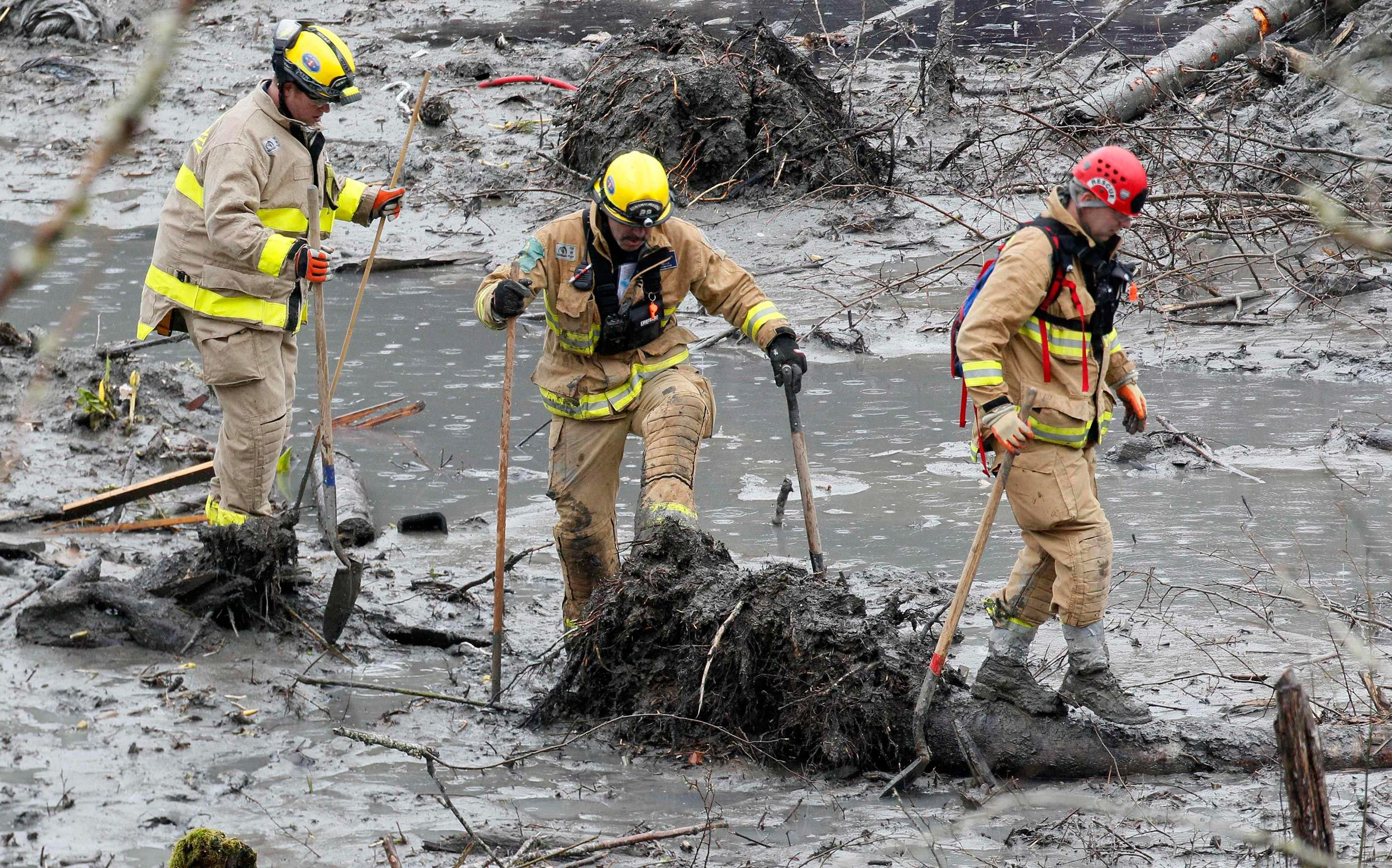 Image: Rescue workers struggle through the mud looking for victims at the mudslide in Oso