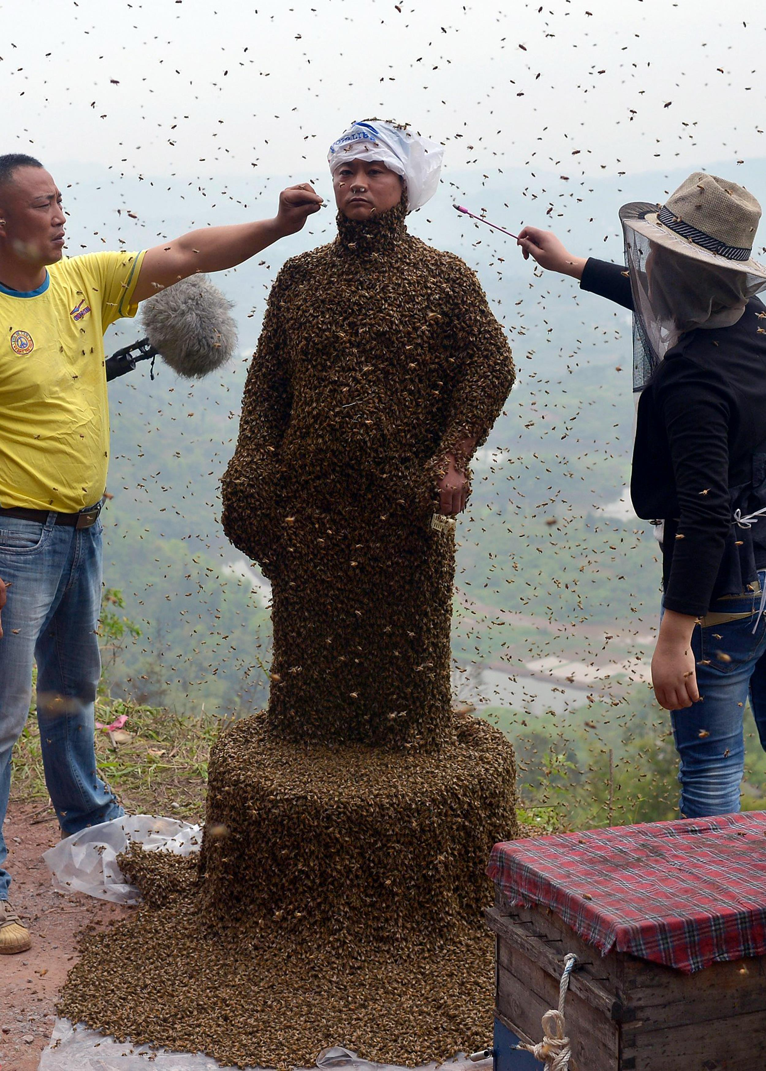Image: Assistants use burning incense and cigarettes to drive away from the face of She during attempt to cover She's body with bees, in Chongqing municipality