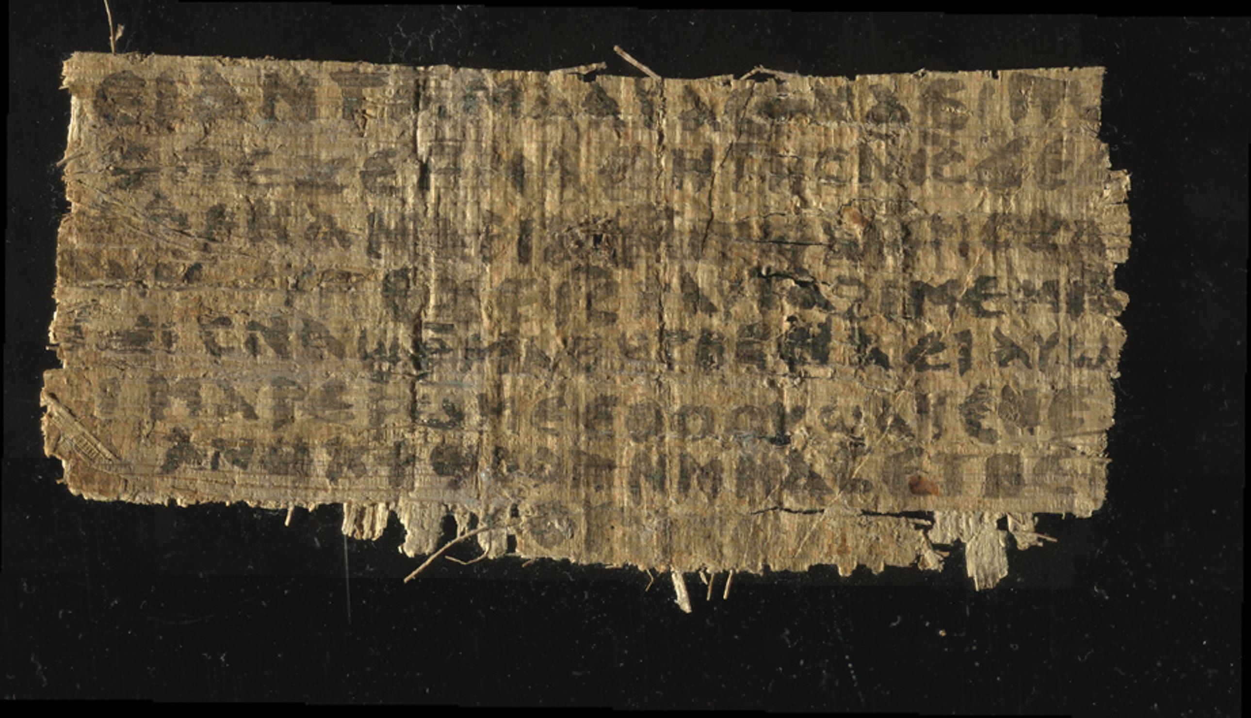 Image: Papyrus