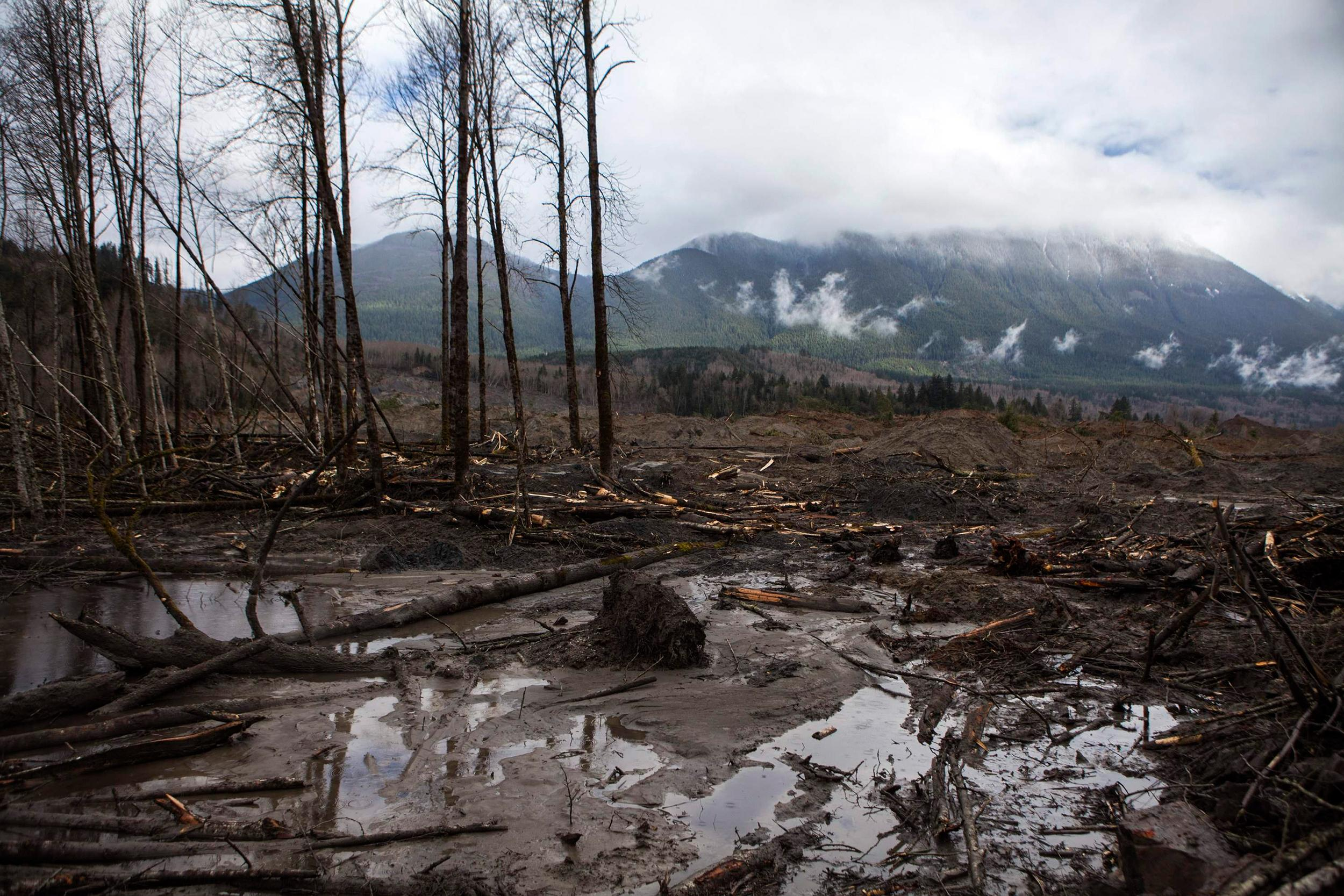 Image: A large pile of debris pile left by a mudslide in Oso, Washi