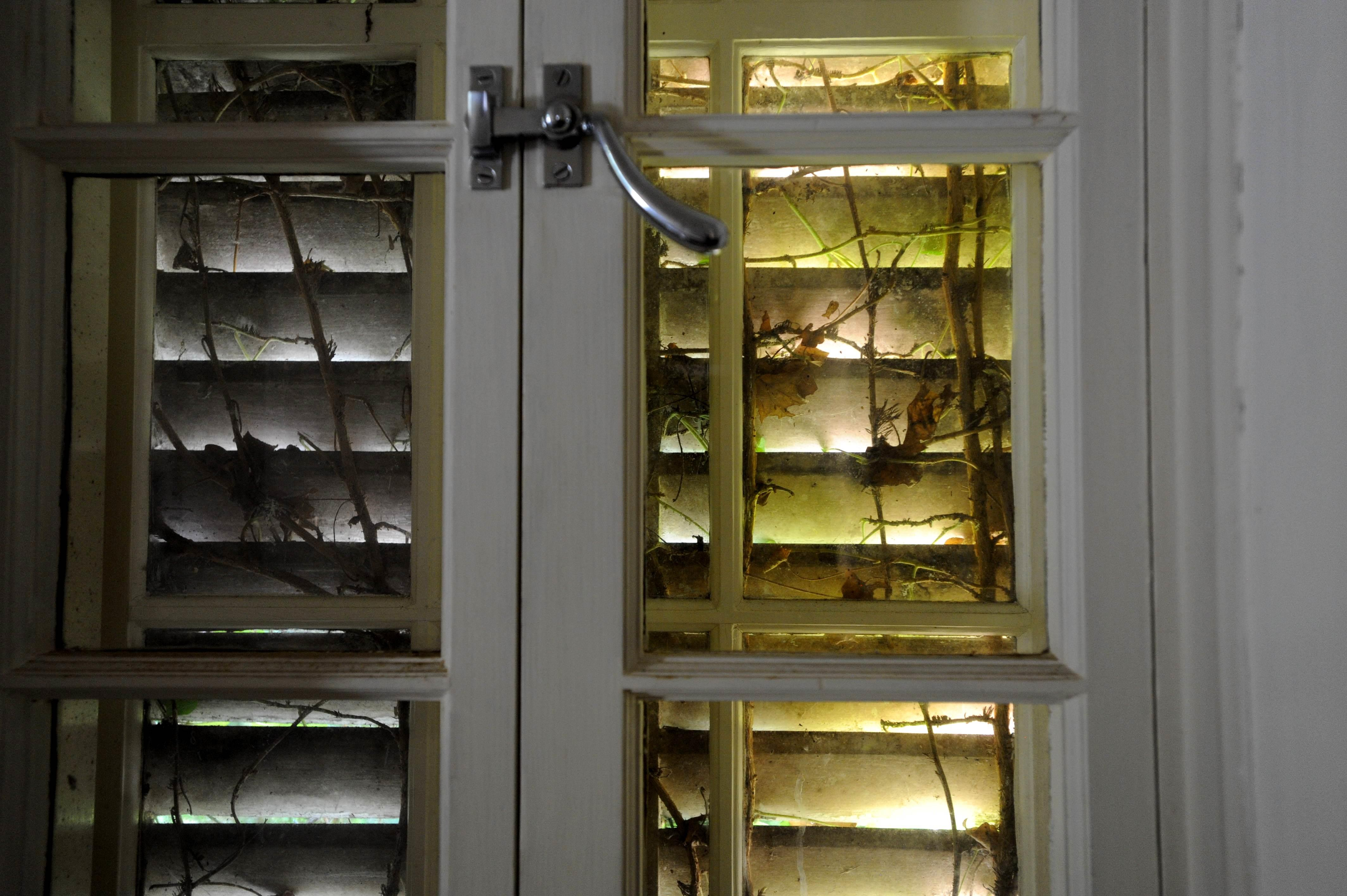 Creeping vines have the kitchen shutters firmly in their grasp at Huguette Clark's retreat in New Canaan, Connecticut.