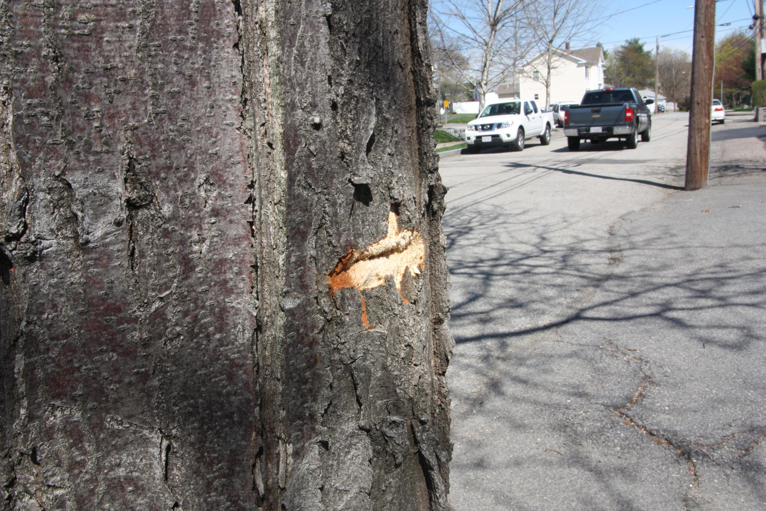Image: A bullet scar in the Watertown neighborhood