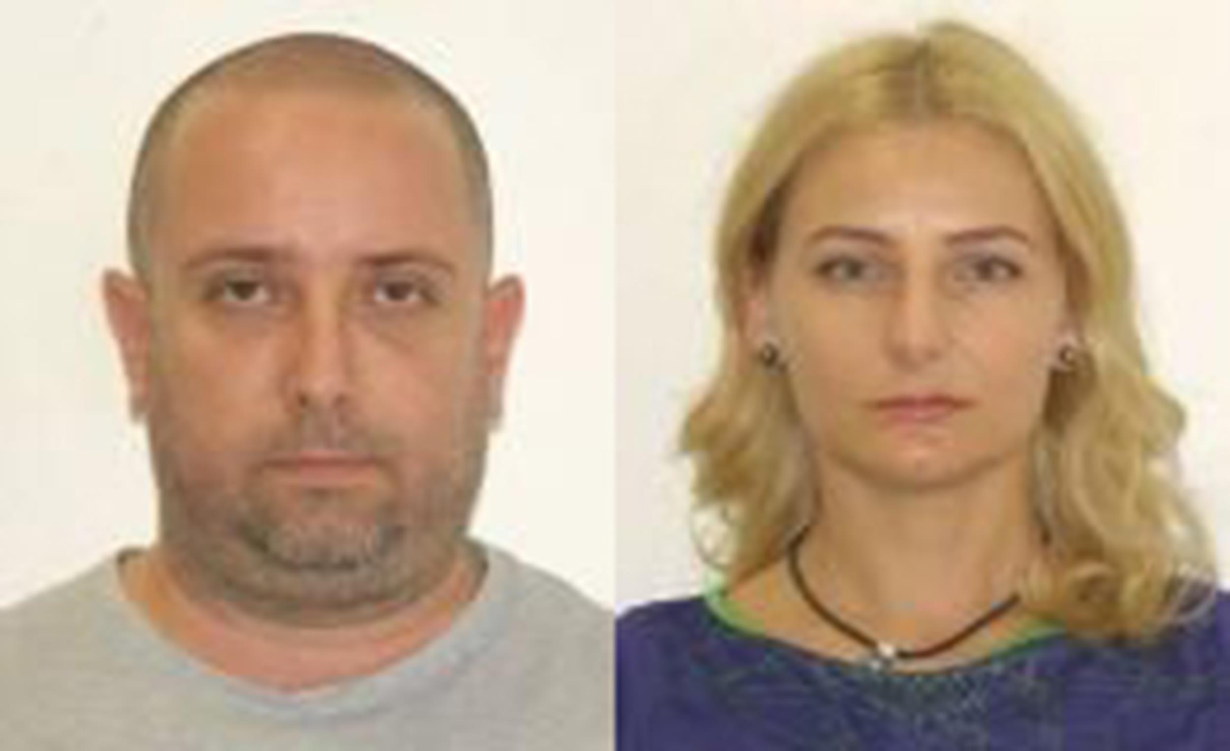 Image: Radu and Diana Nemes