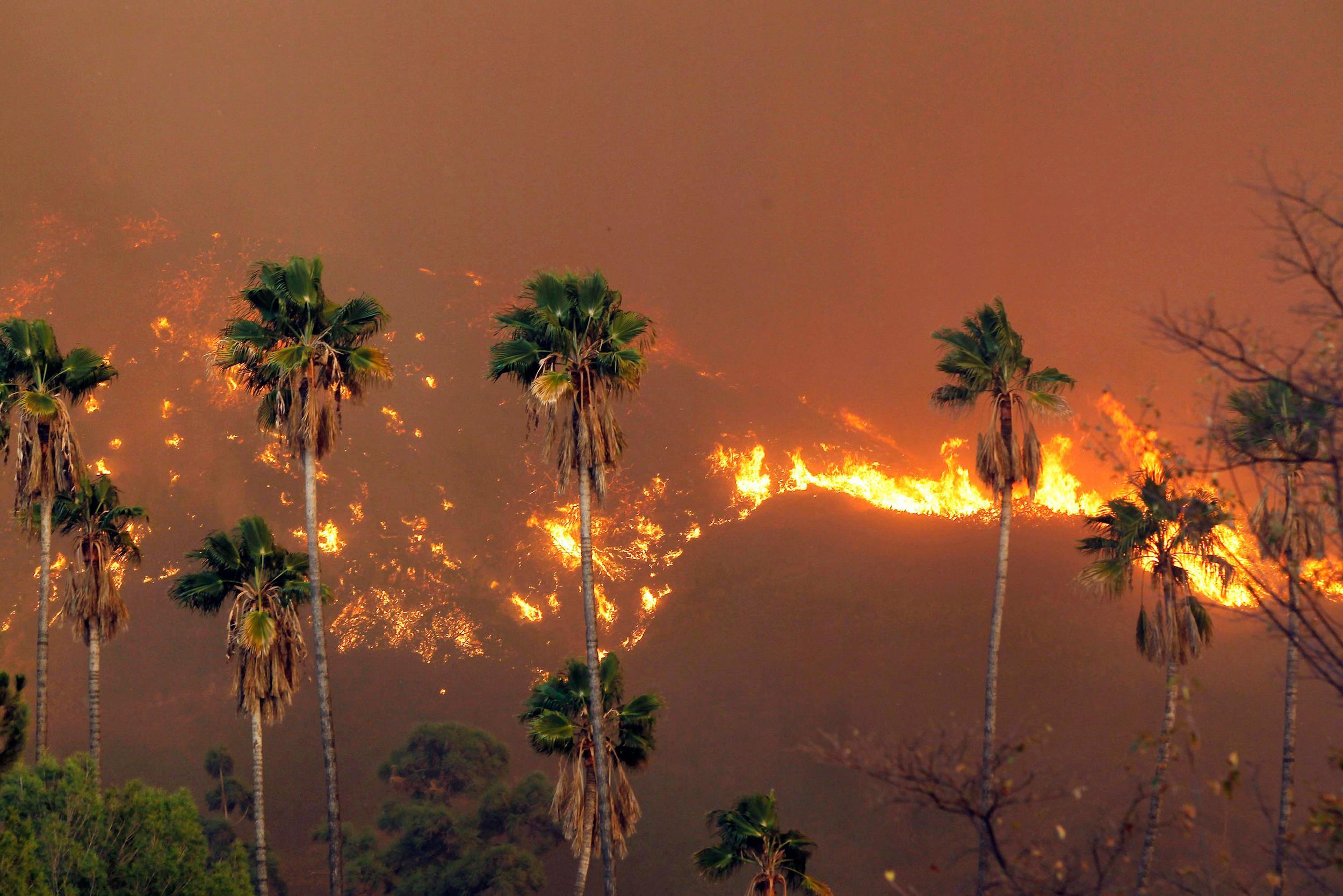 Image: A wildfire burns near Glendora, Calif., on  Jan 16, 2014.
