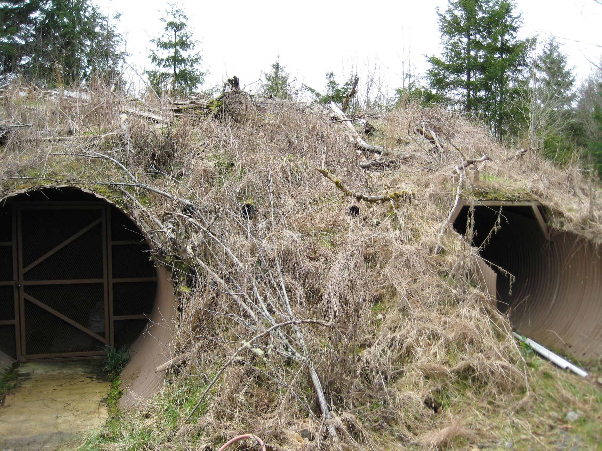 Image: This 'doomsday bunker' was discovered when FBI agents served a search warrant on a property owned by Radu and Diana Nemes in Yelm, Wash.