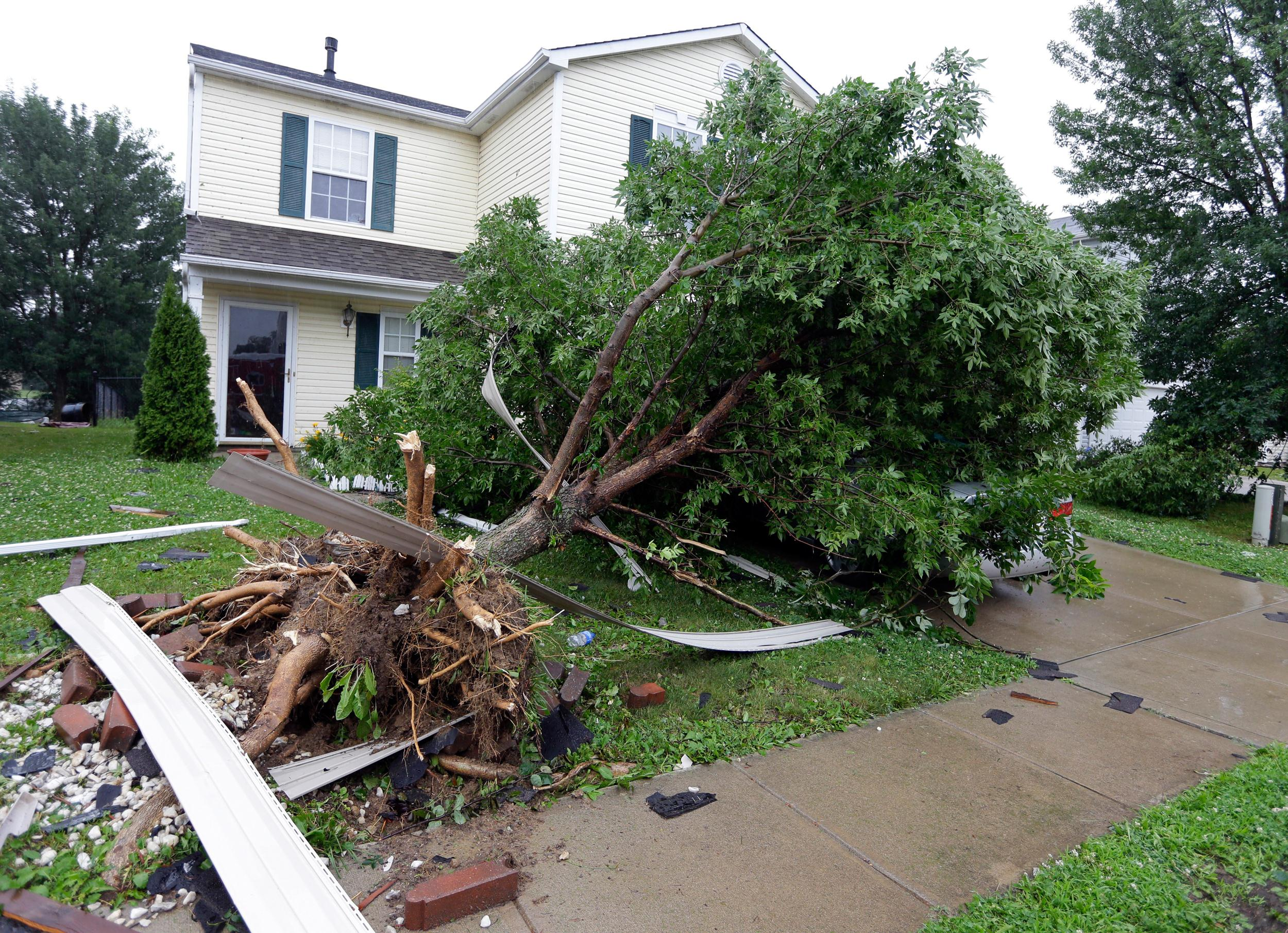 Image: A tree uprooted by a storm covers a car in front of  home in Indianapolis