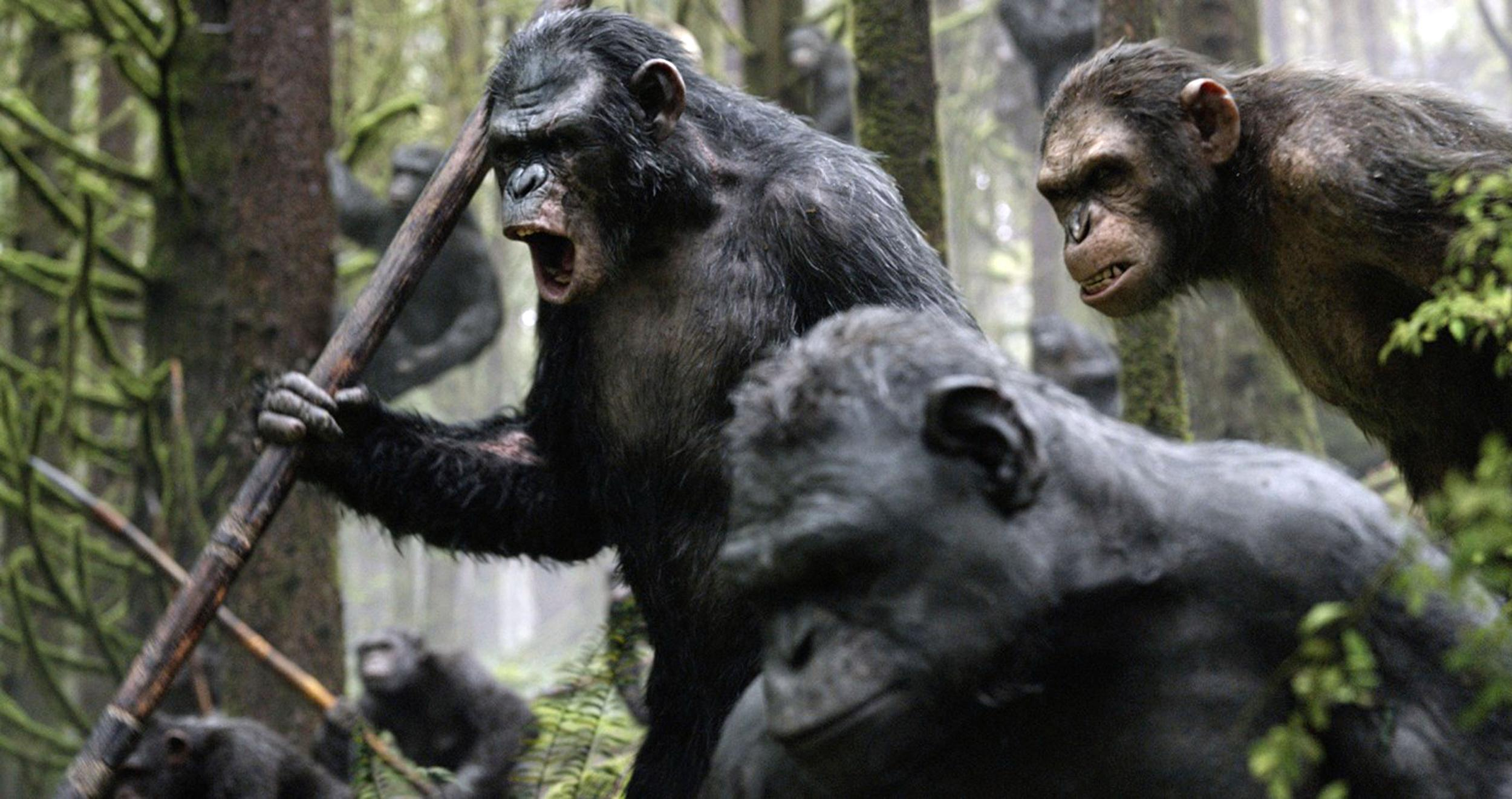 Can  U0026 39 Apes U0026 39  Save A Bombing Summer Box Office