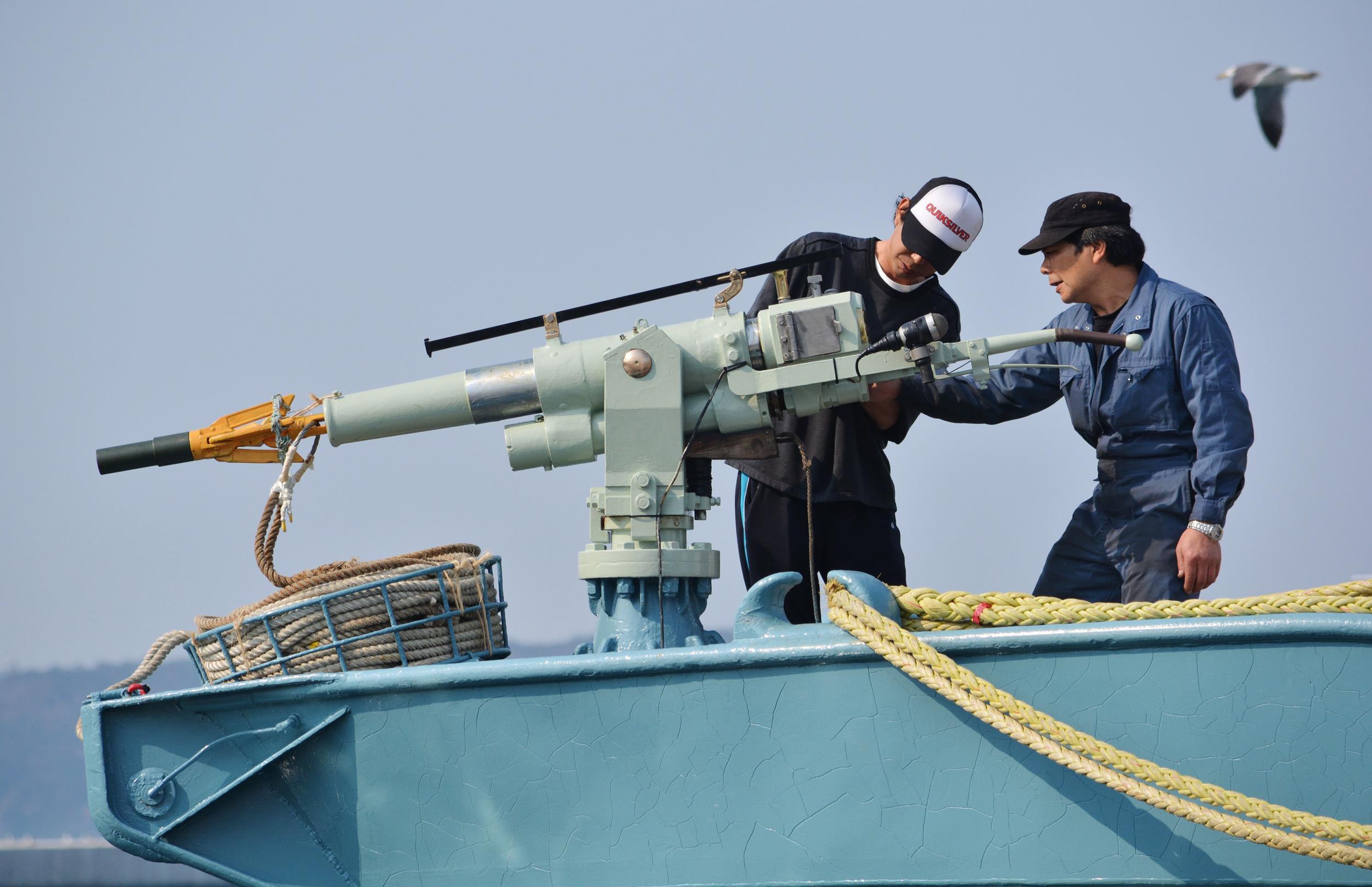 Image: Crew of a whaling ship check a whaling gun