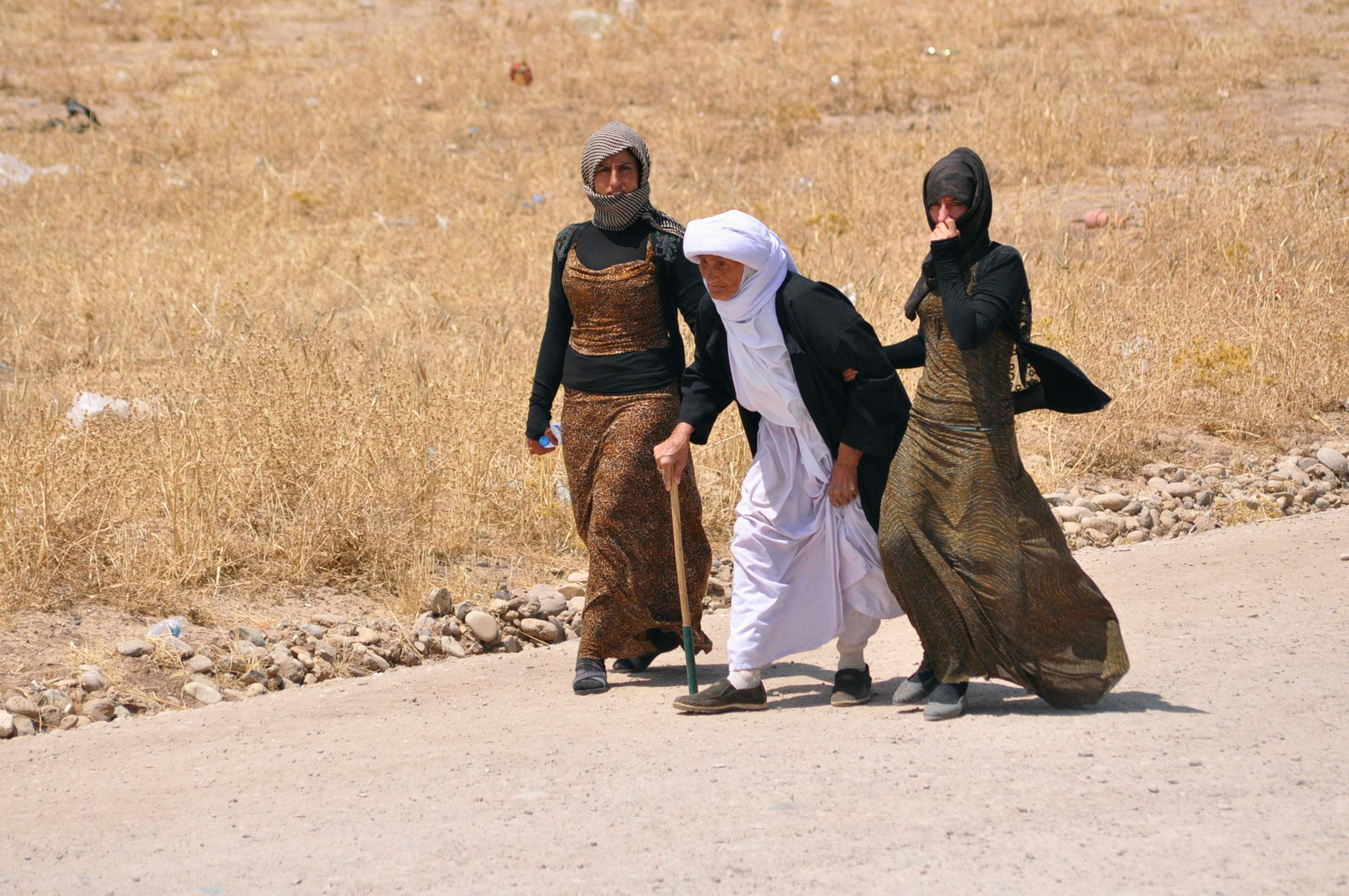 Image: Displaced families from the minority Yazidi sect, fleeing the violence, walk on the outskirts of Sinjar, west of Mosul
