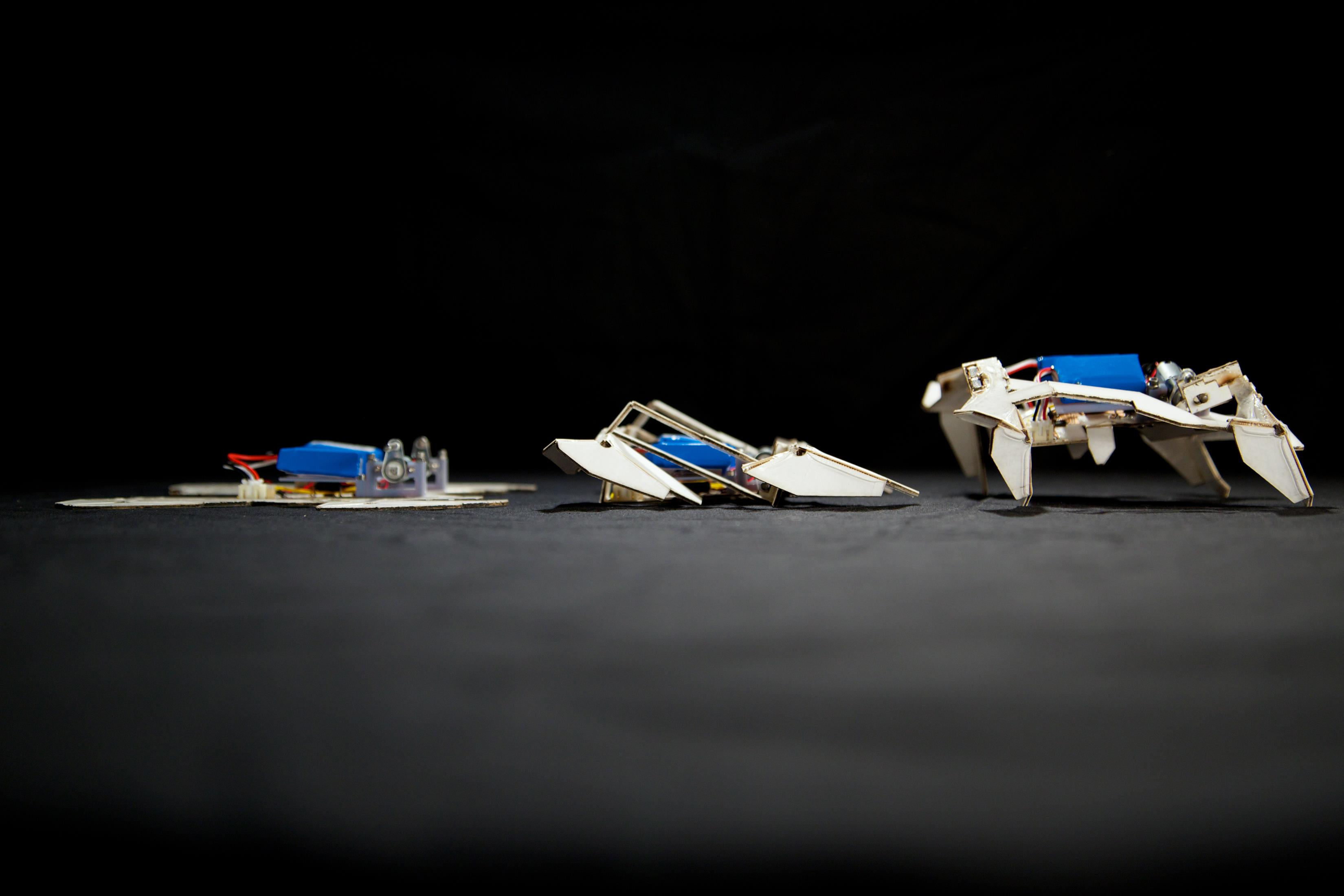 Image: Origami robot