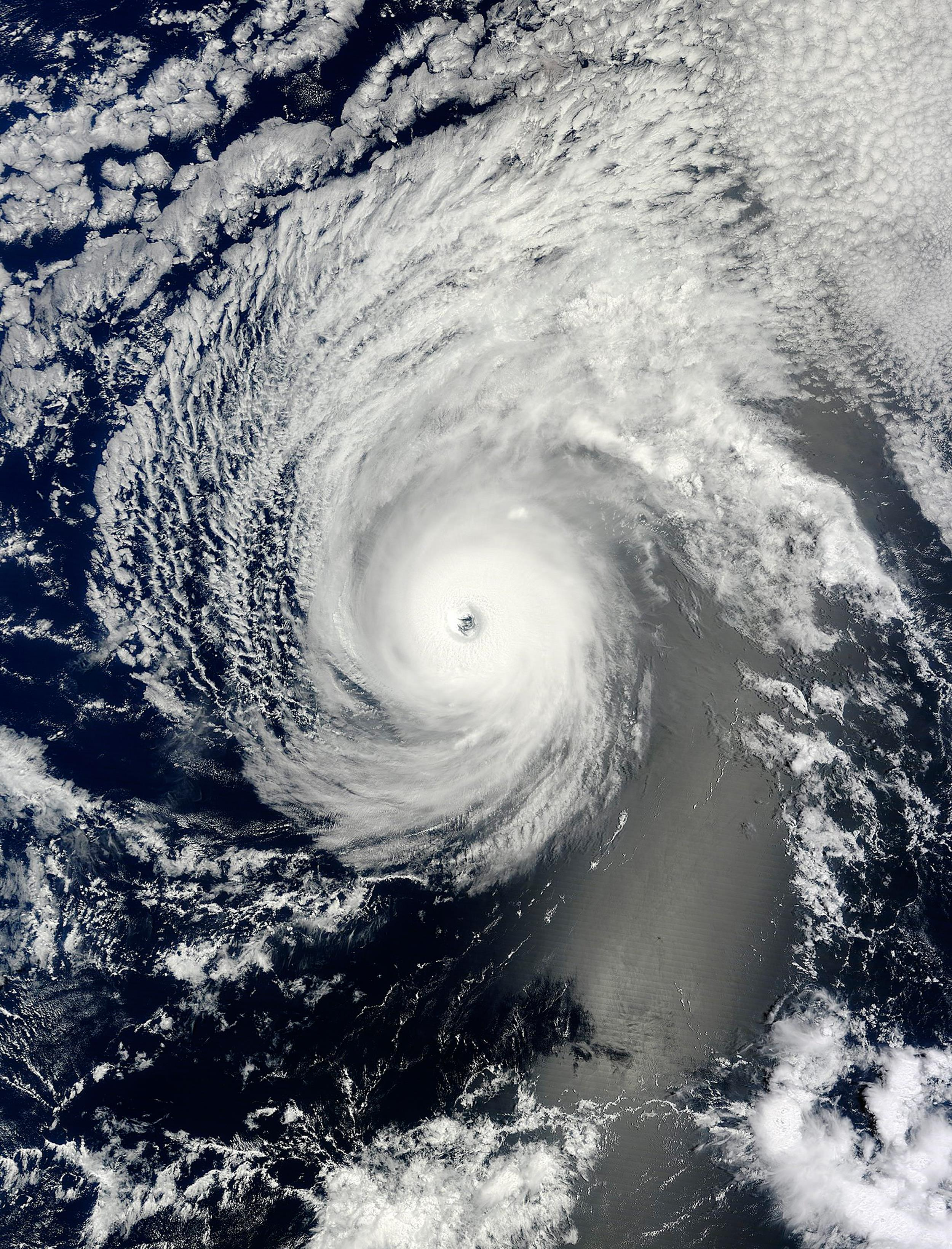 Image: Hurricane Iselle and Hurricane Julio are pictured en route to Hawaii in this NASA handout satellite image