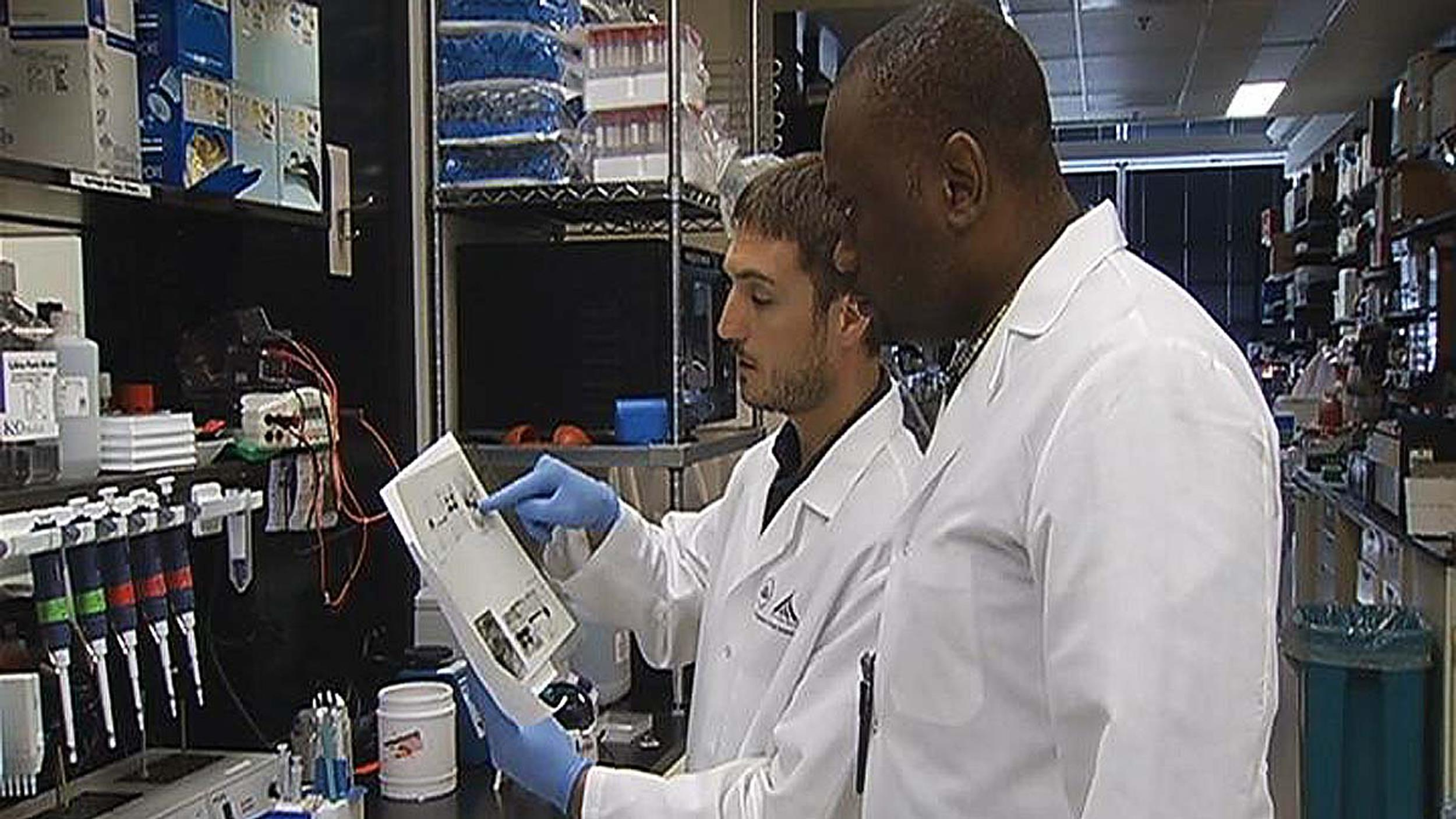 Image: Scientists at work on an Ebola vaccine at an NIH lab.