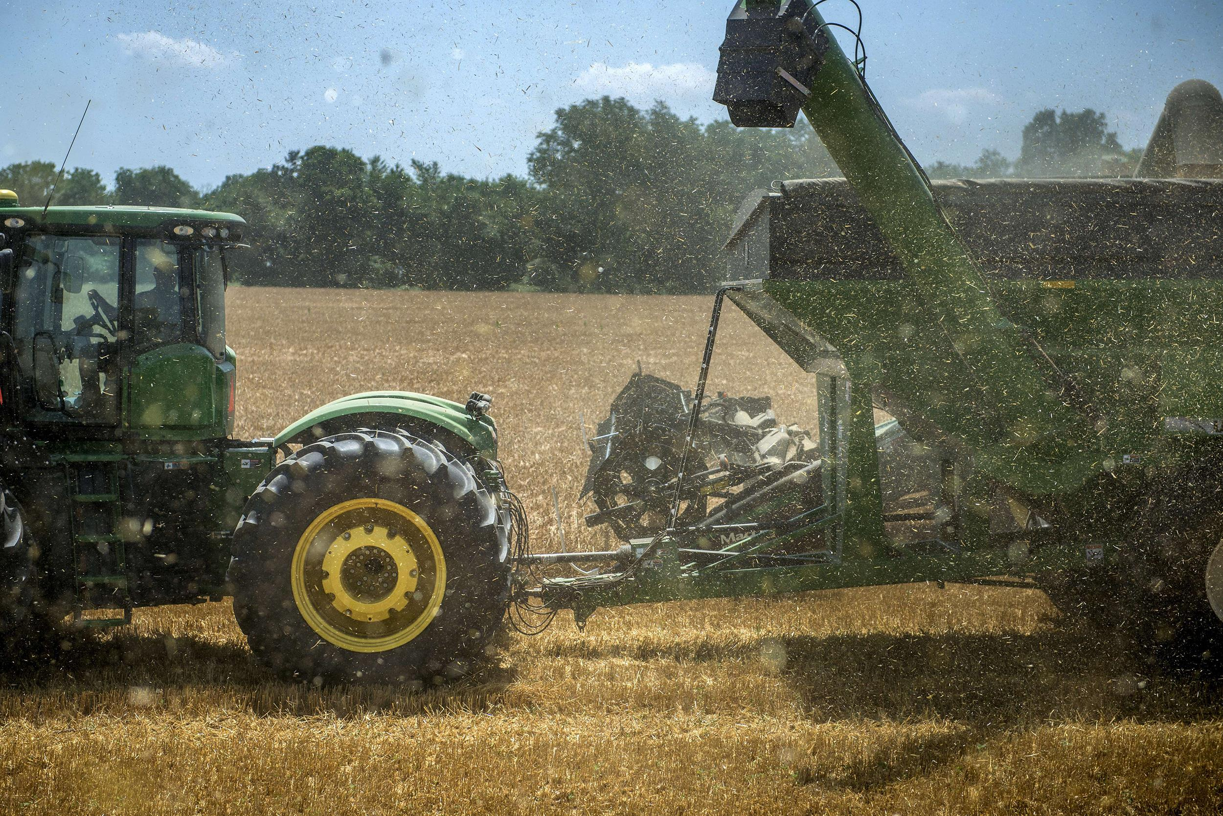 Image: A tractor pulls a grain cart is seen while working a grain field while harvesting barley on June 17 in Milford, Delaware.