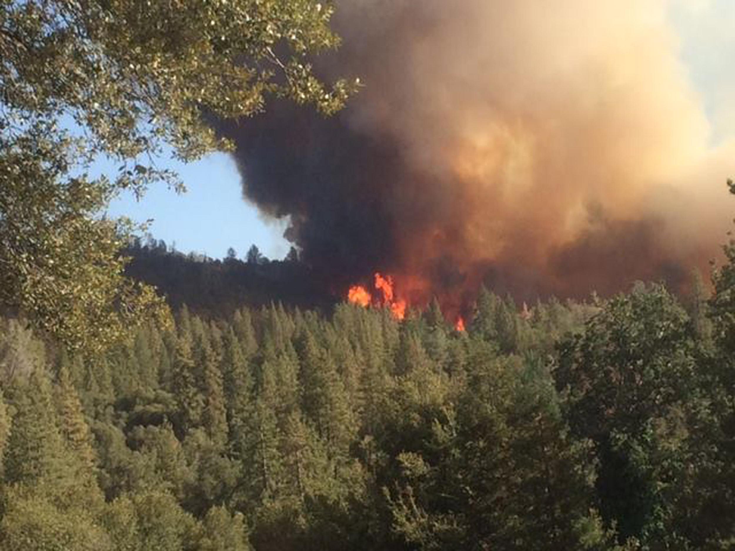 Crews Make Progress Battling Wildfire Near Yosemite