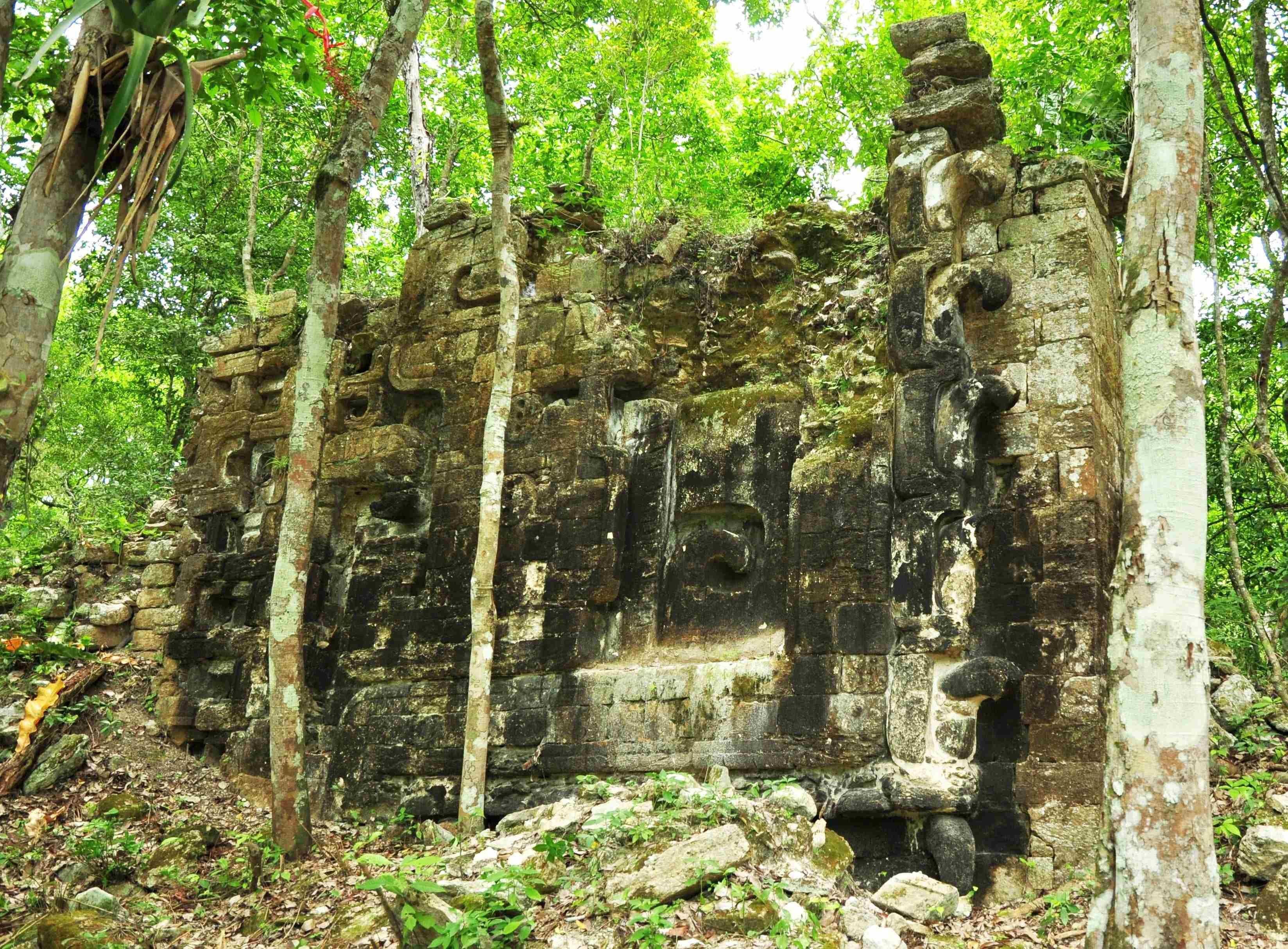 Image: Remains of an ancient Mayan city in Lagunita