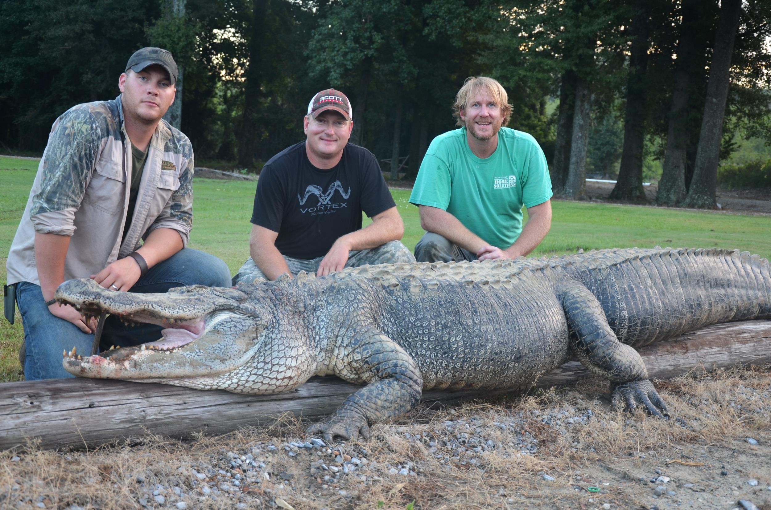 Image: A 792 pound alligator was caught in Mississippi.