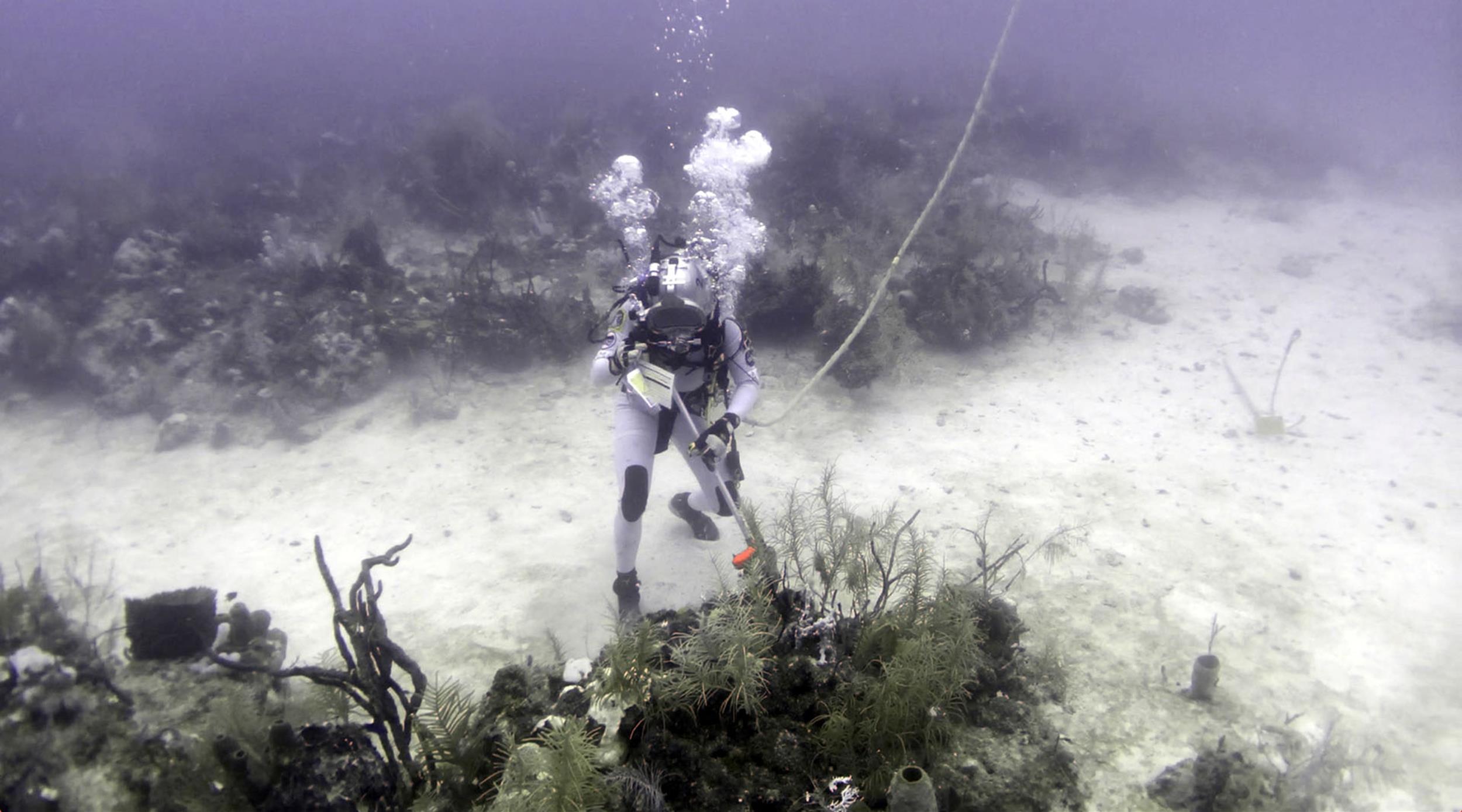 Hold Your Breath: 'Aquastronauts' Go Underwater to Train ...
