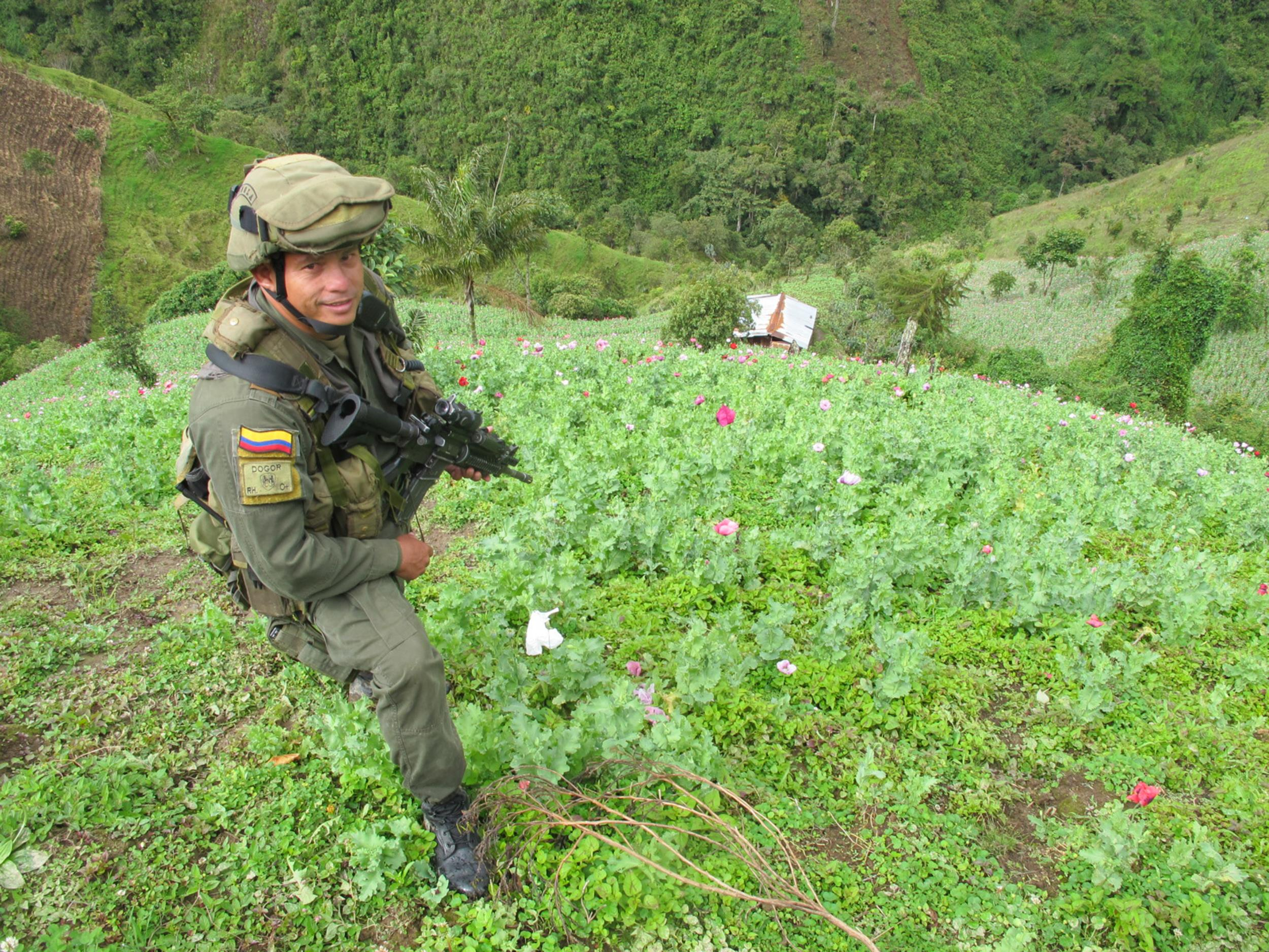 Ground Zero Tracking Heroin From Colombia To Americas Streets