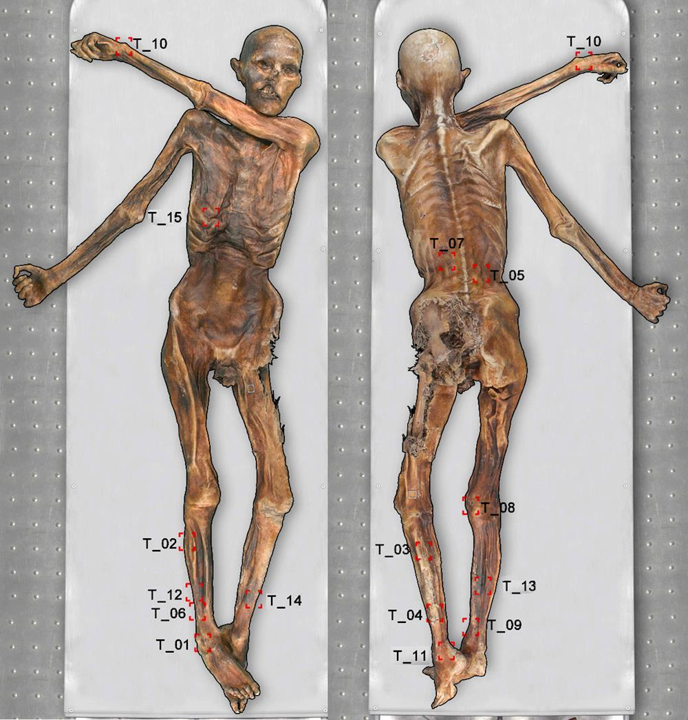 Body Art: Otzi the 5,300-Year-Old Mummified Iceman Had 61 Tattoos
