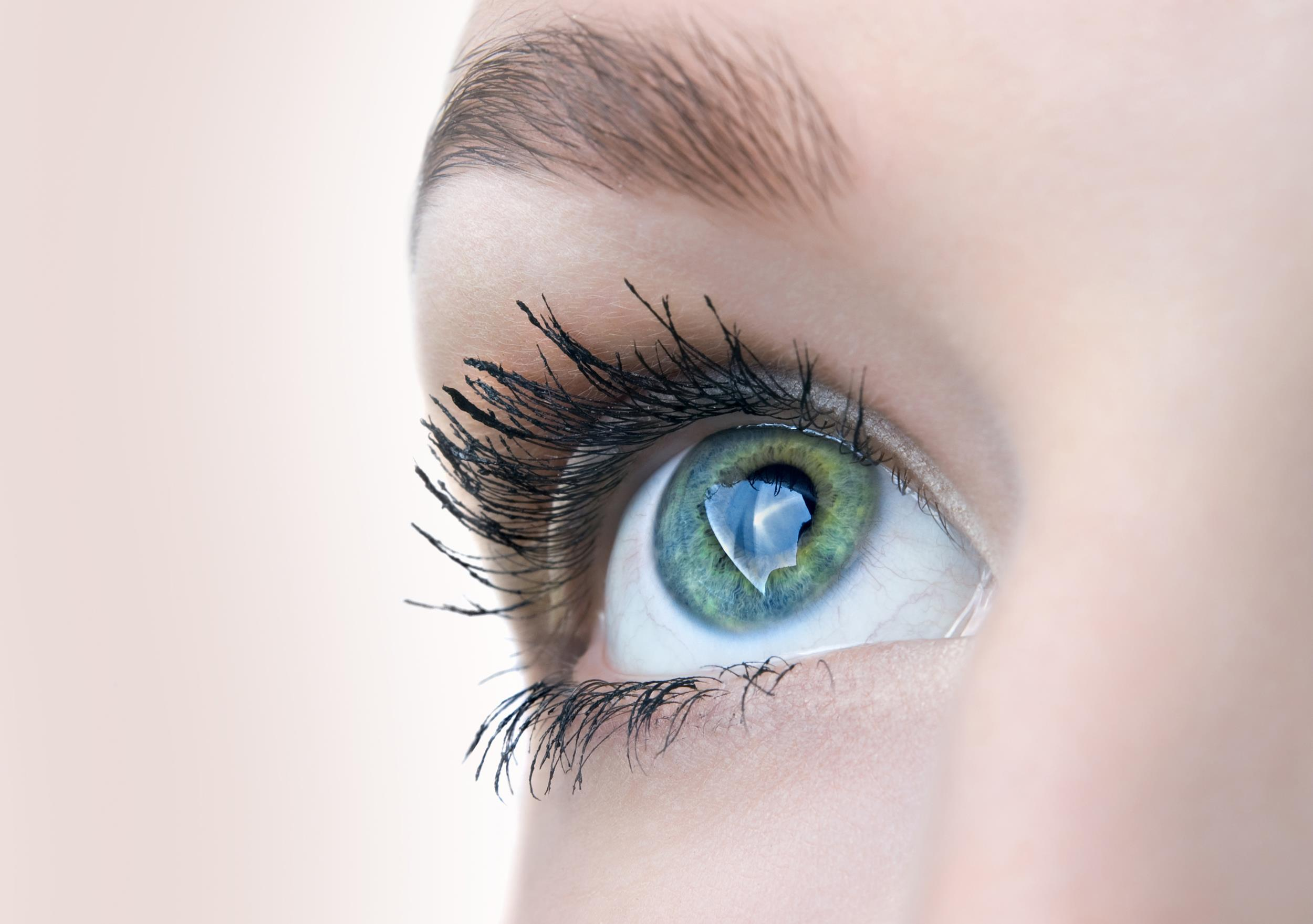 Whats The Best Length For Eyelashes Based On Science