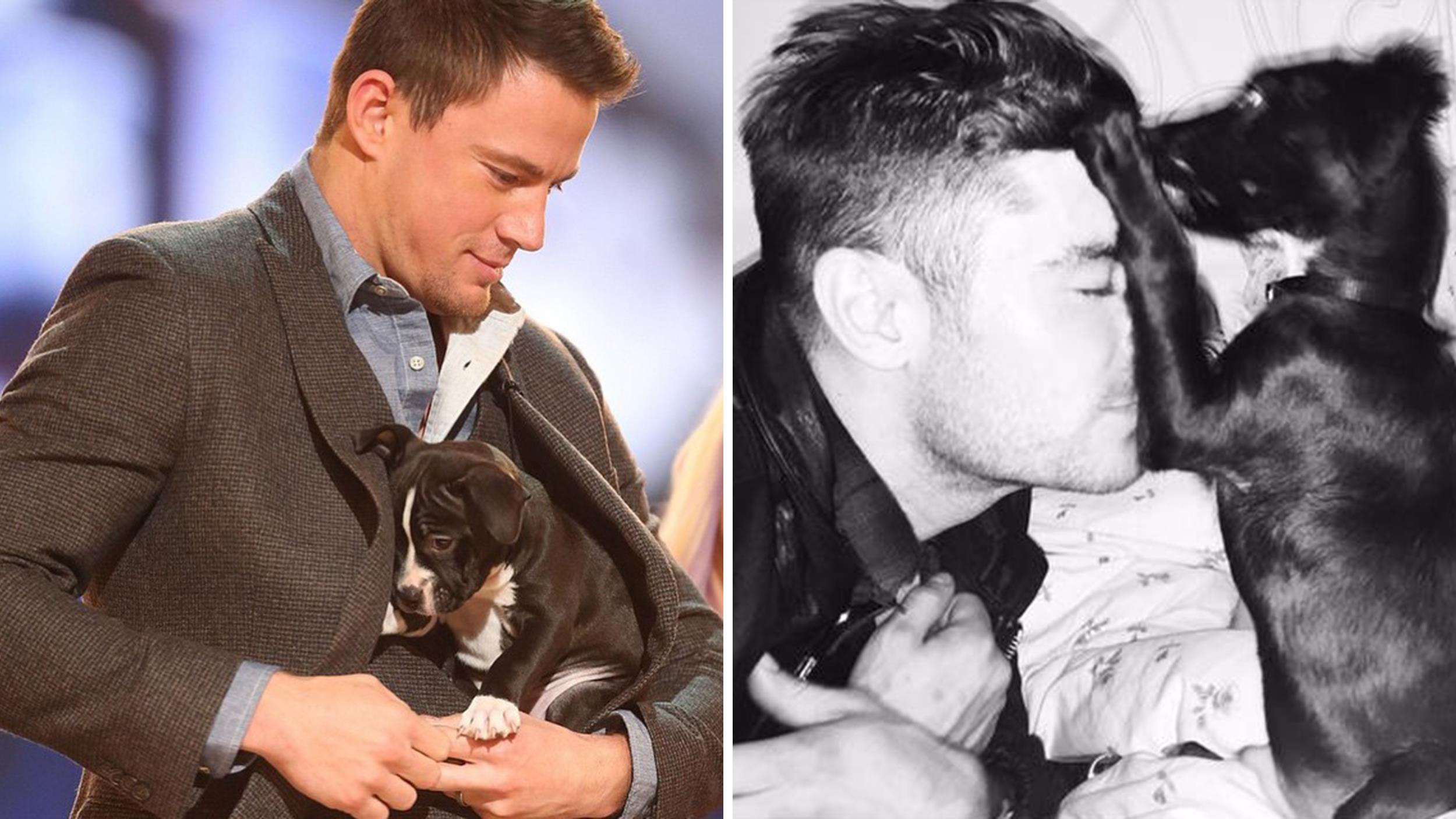 Day photos from zac efron channing tatum and other stars today com