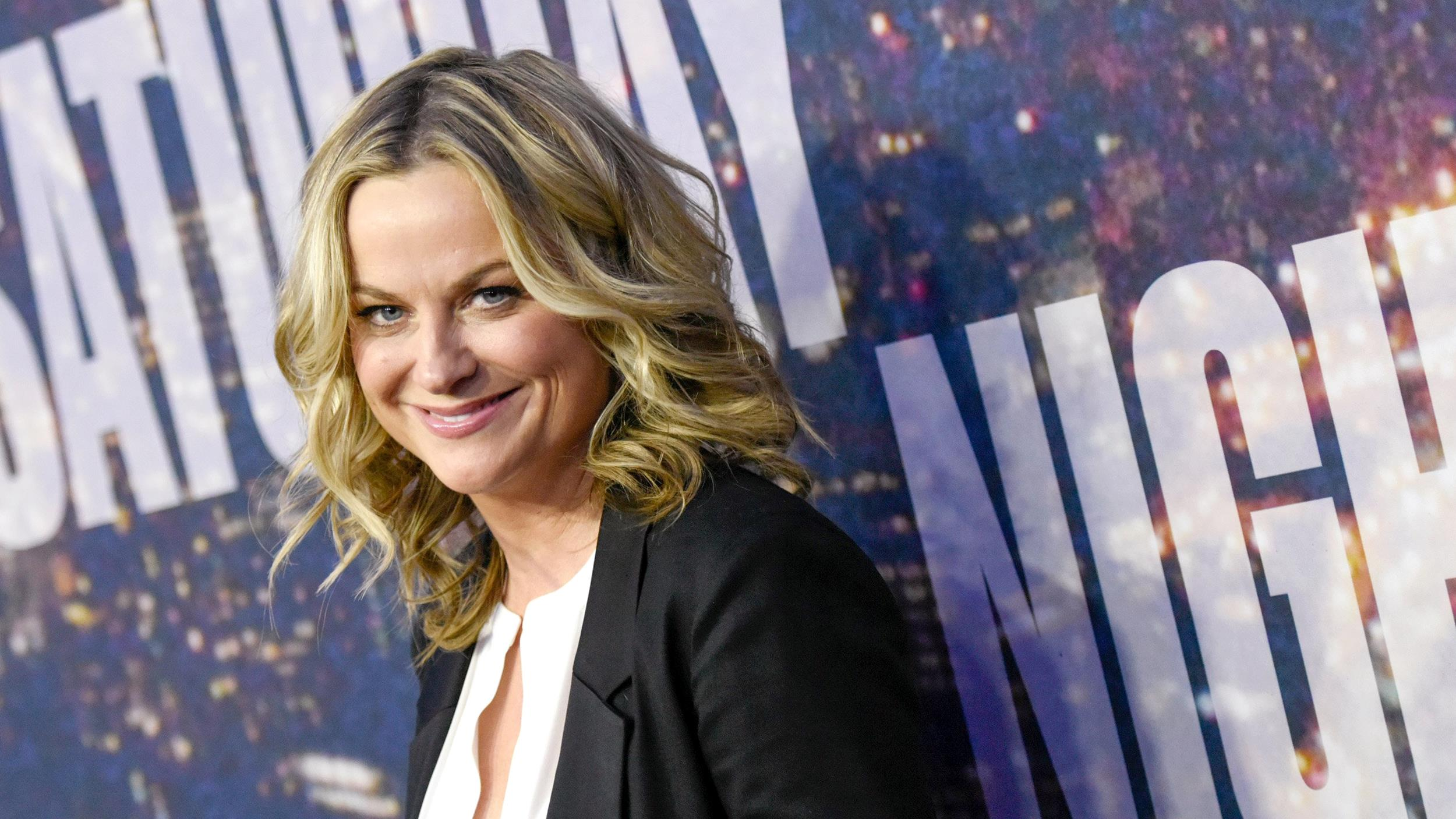 22+ Amy Poehler Natural Hair Color Pictures