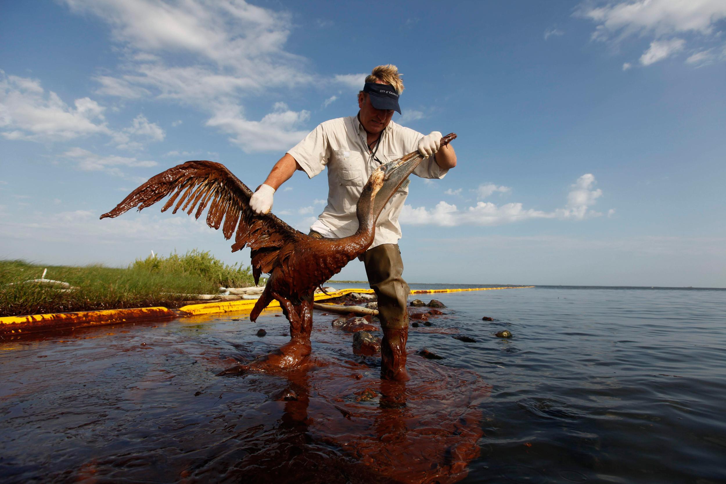 Timeline: BP Settlement Ends 5-Year Legal Saga