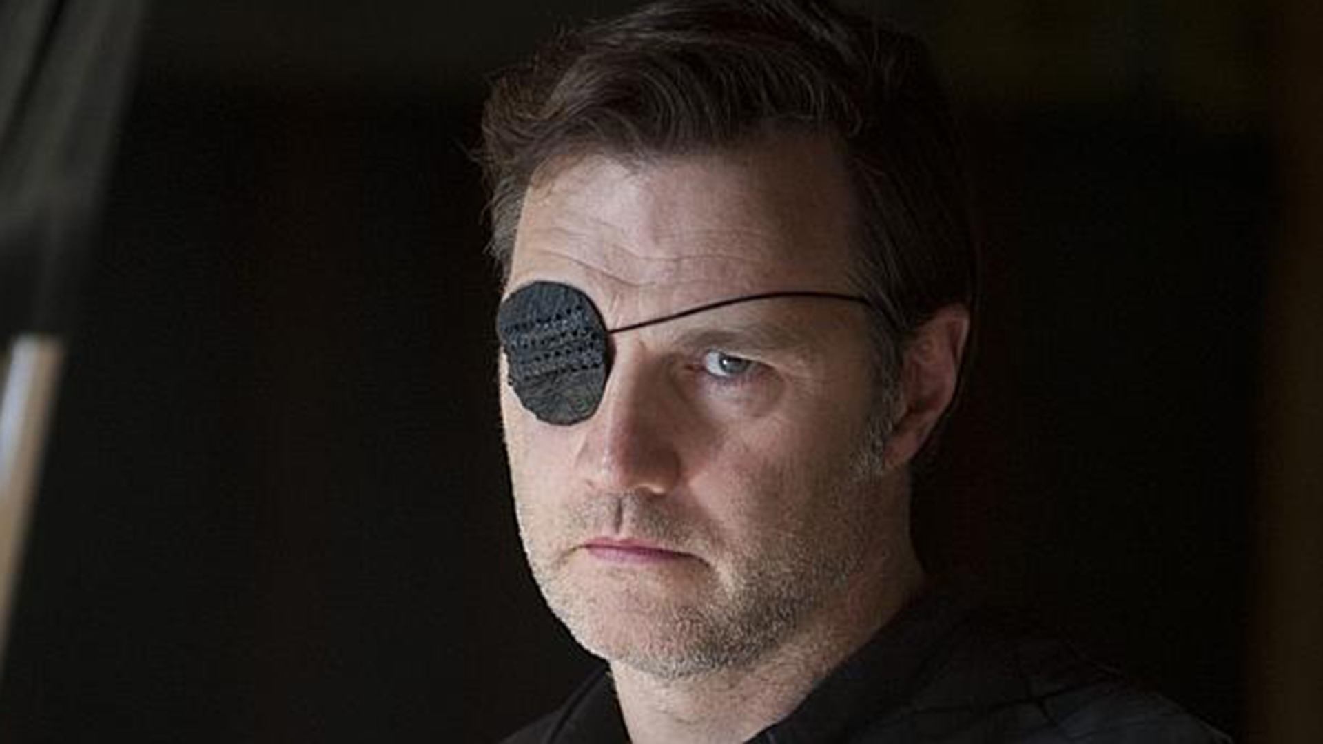 David Morrissey, 'Walking Dead' Governor, aids boat ...