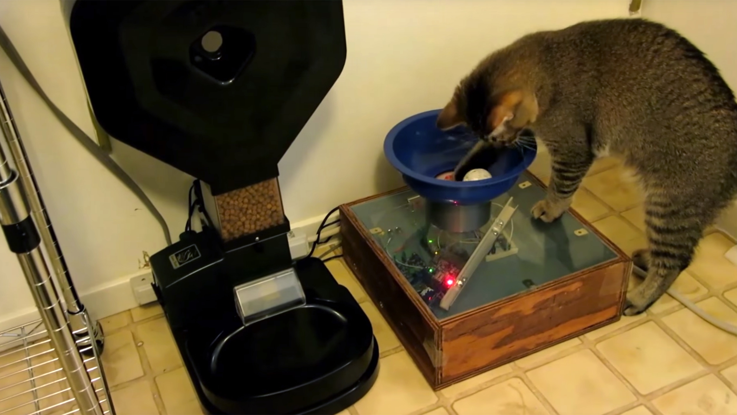 timed food automatic cat large image dispenser larger dog feeder product see pet